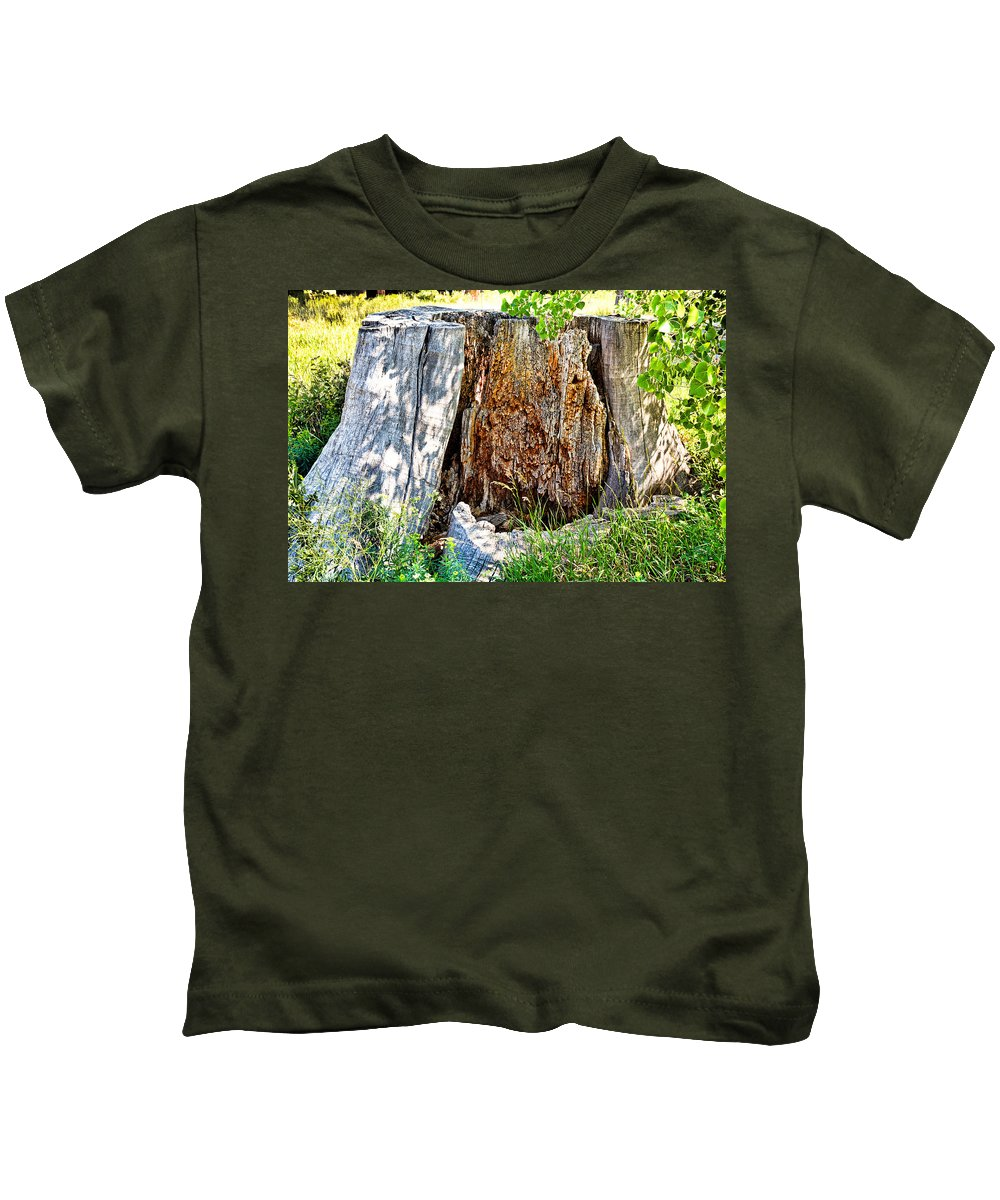 Deadwood Kids T-Shirt featuring the photograph Deadwood On Cherry Creek Trail 3 by Robert Meyers-Lussier
