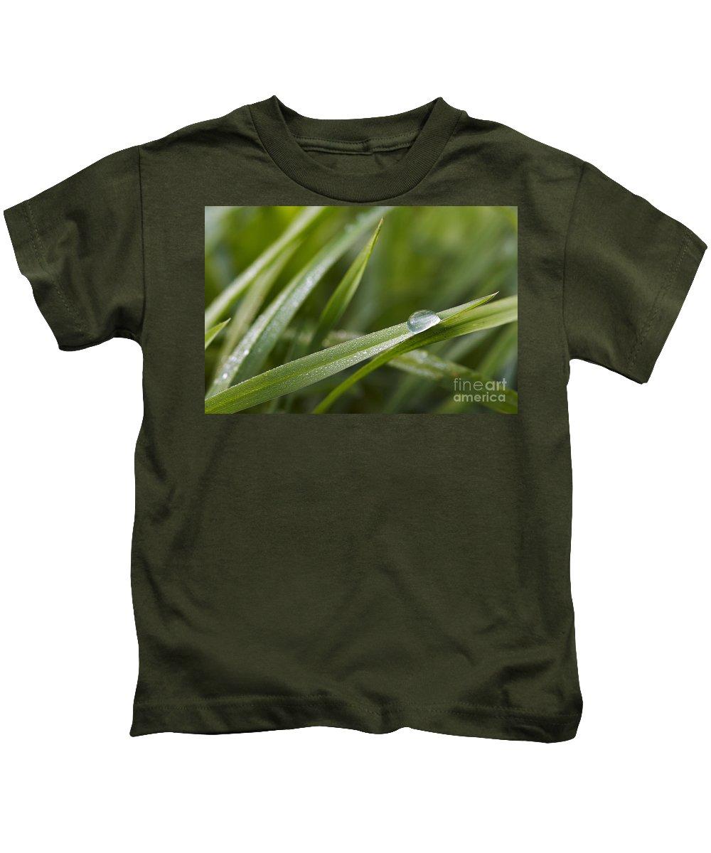 Grass Kids T-Shirt featuring the photograph Dewy Drop On The Grass by Michal Boubin