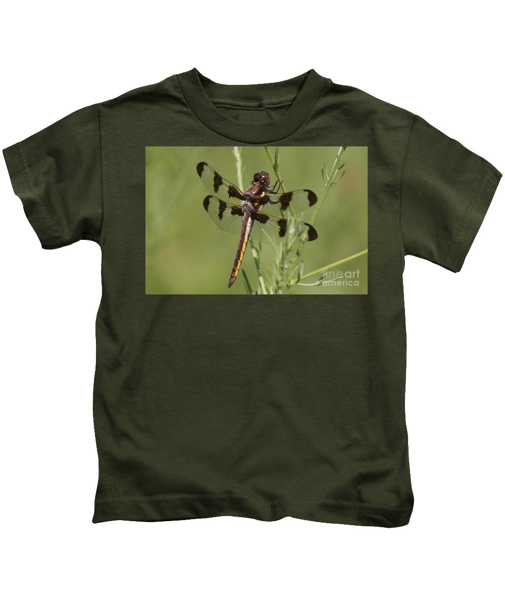 Insect Kids T-Shirt featuring the photograph Dragon Fly by Robert Pearson