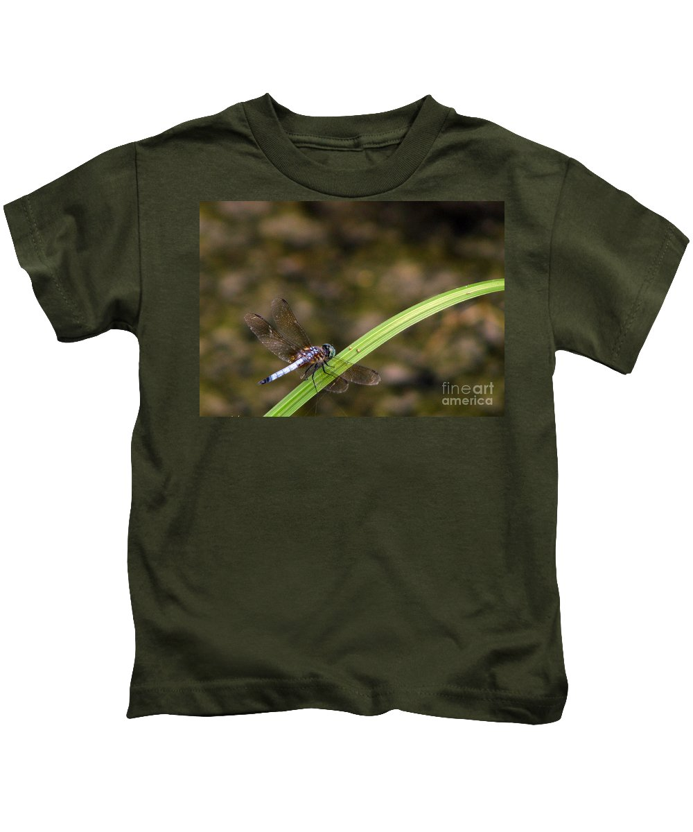 Dragonfly Kids T-Shirt featuring the photograph Dragonfly by Amanda Barcon