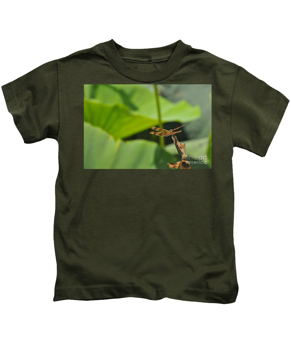Dragon Fly Kids T-Shirt featuring the photograph Dragonfly Nearby by Vicky Tubb