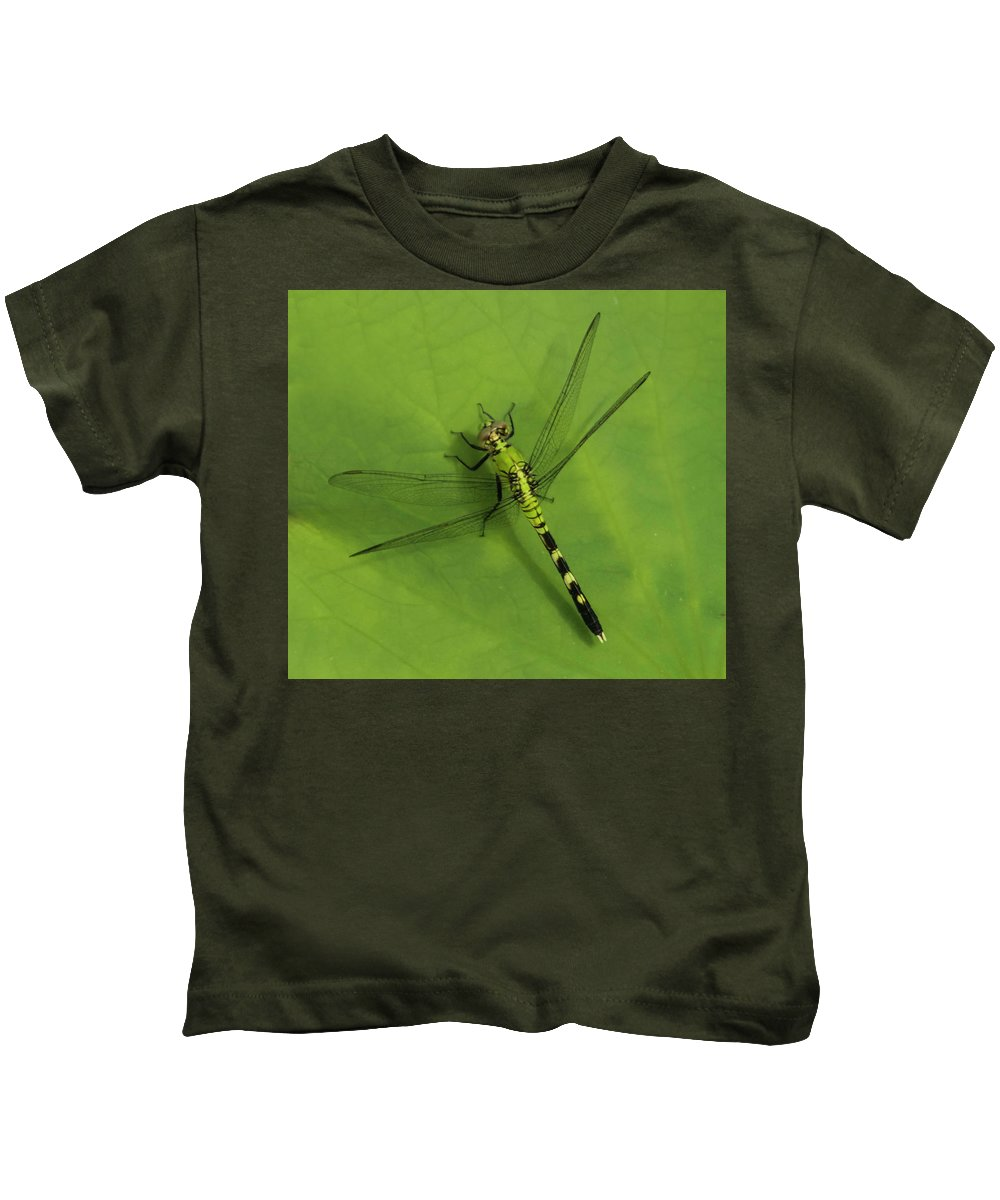 Small Kids T-Shirt featuring the photograph Dragonfly On Leaf by Roberta Kayne