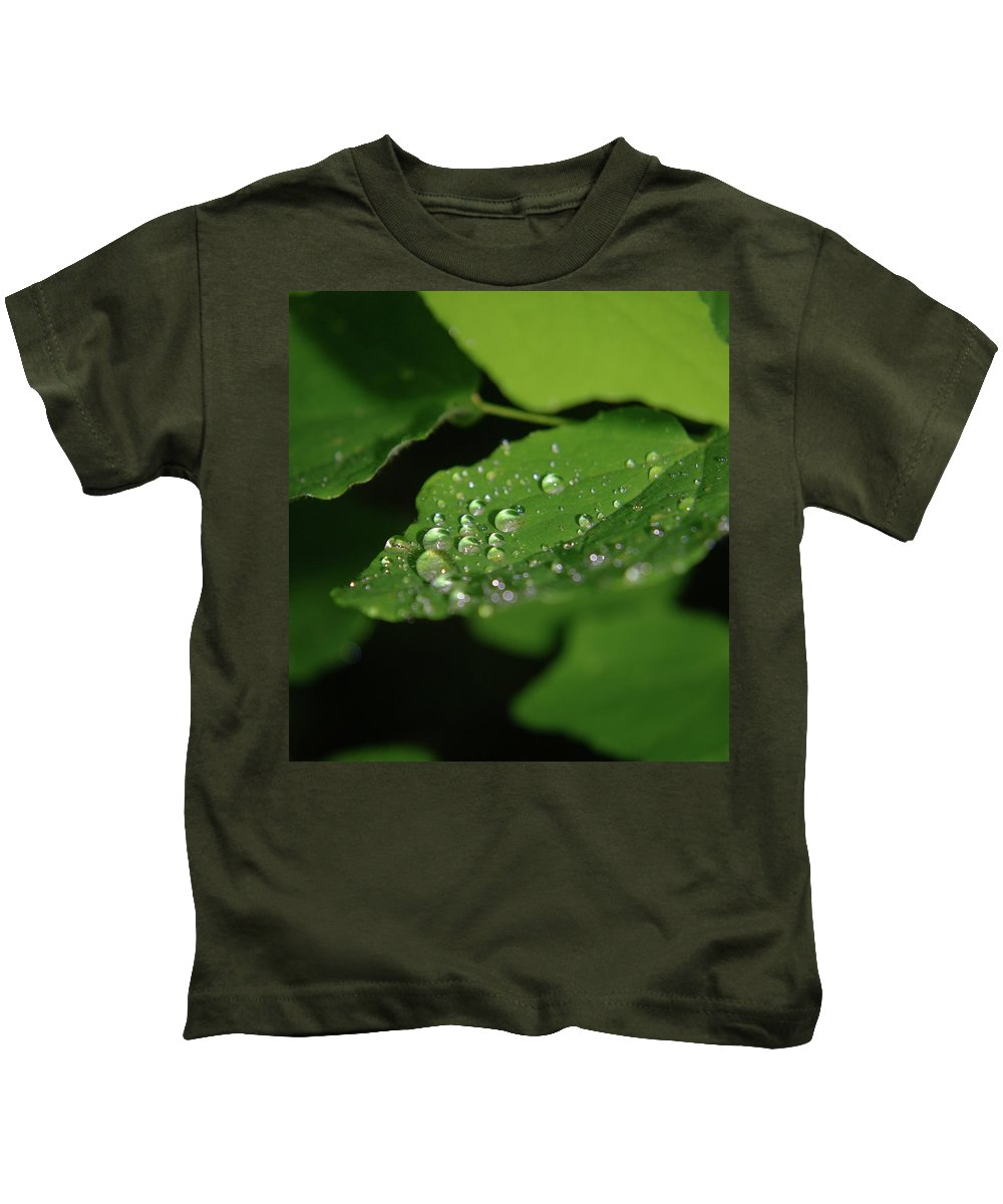 Raindrops Kids T-Shirt featuring the photograph Droplets On A Leaf by Jeff Swan