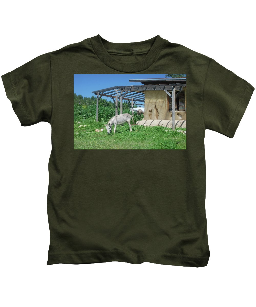 Tranquil Kids T-Shirt featuring the photograph Ecological Farm by Yotam Jacobson