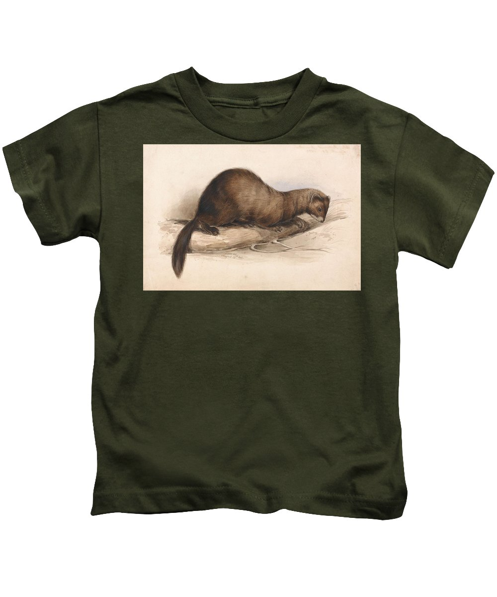 Art Kids T-Shirt featuring the painting Edward Lear - A Weasel by Edward Lear