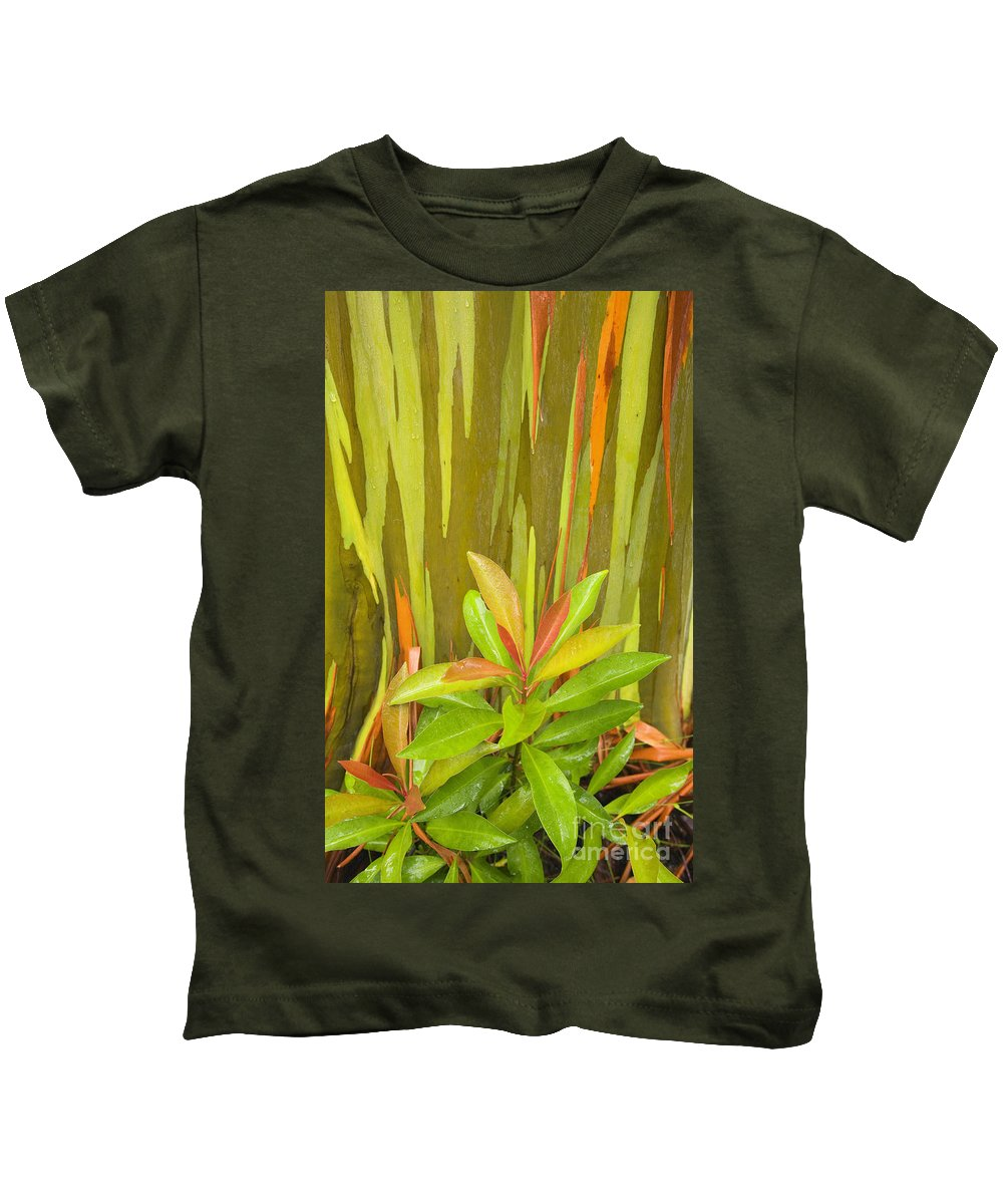 Background Kids T-Shirt featuring the photograph Eucalyptus And Leaves by Ron Dahlquist - Printscapes