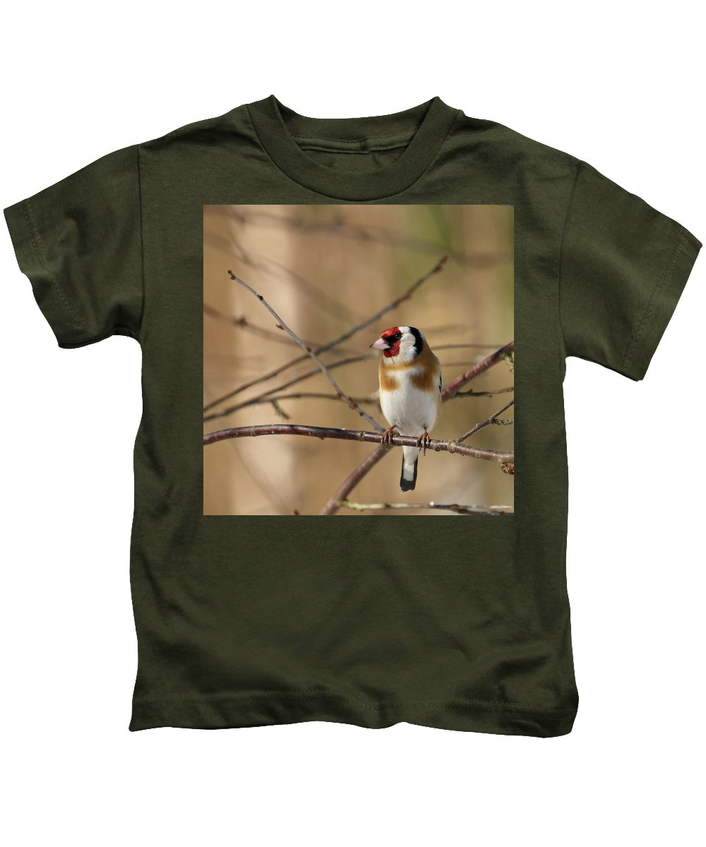 Lehtokukka Photography Kids T-Shirt featuring the photograph European Goldfinch 3 by Jouko Lehto