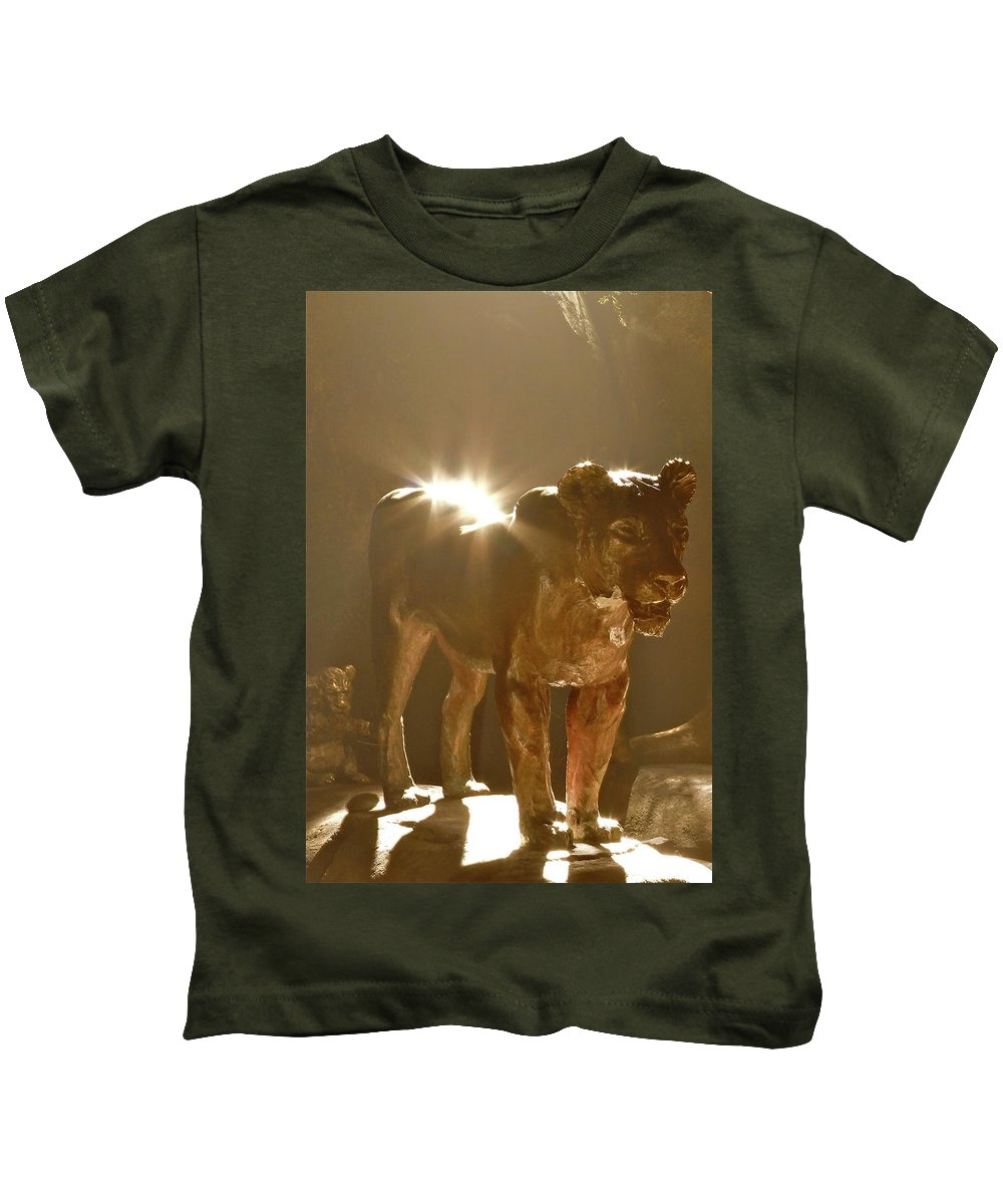 Light Kids T-Shirt featuring the photograph Evening's Light by Laddie Halupa