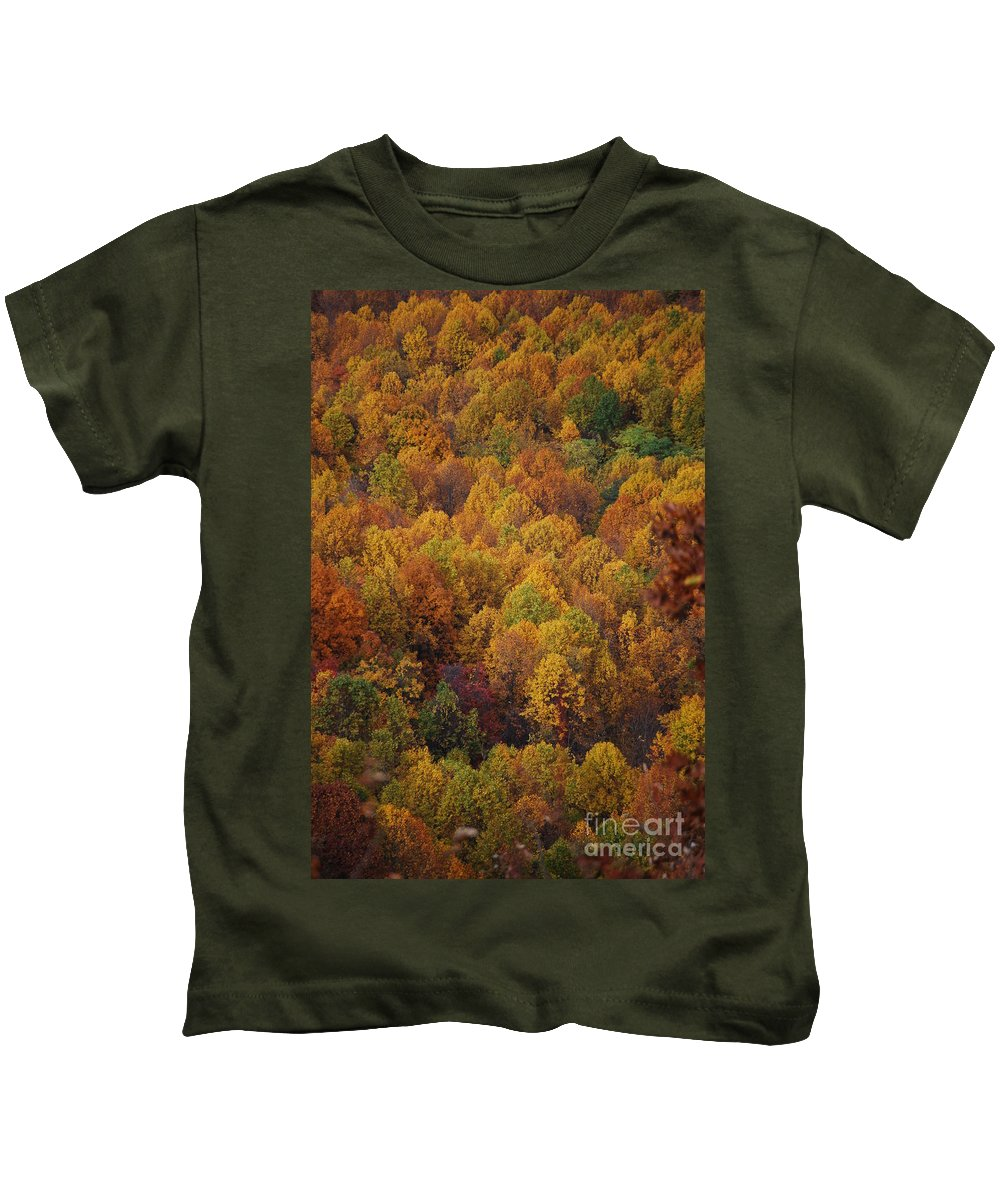 Fall Kids T-Shirt featuring the photograph Fall Cluster by Eric Liller
