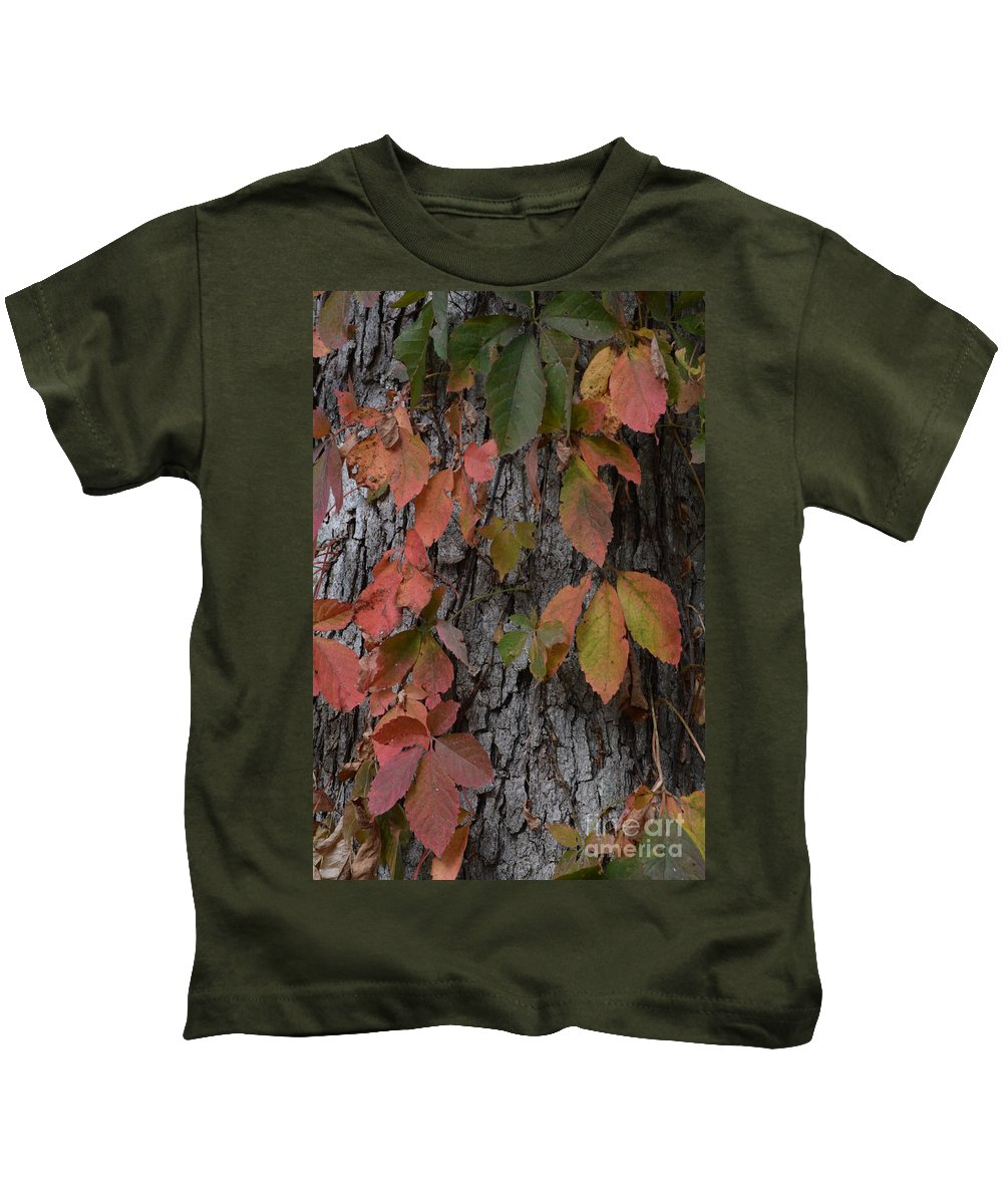 Fall Colors Kids T-Shirt featuring the photograph Fall Colors by David Murray