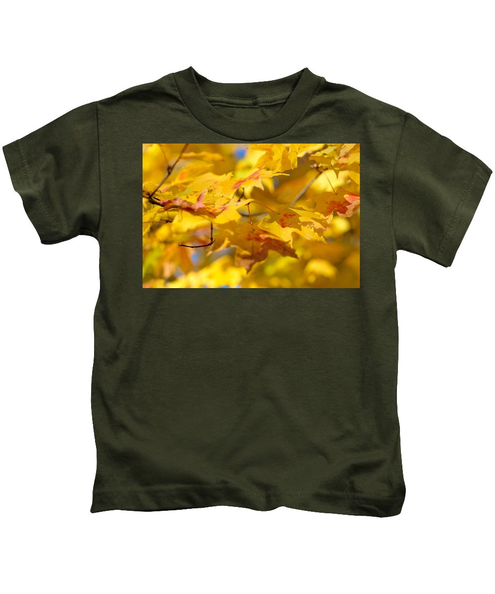 Nature Kids T-Shirt featuring the photograph Fall Colors by Sebastian Musial