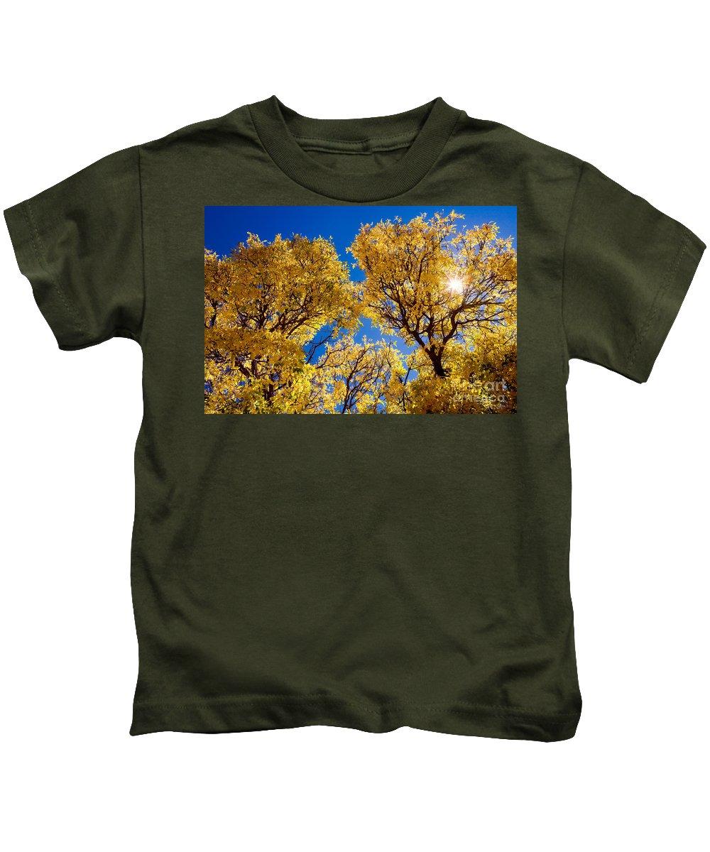 Leaves Kids T-Shirt featuring the photograph Fall Foliage Near Ruidoso Nm by Matt Suess