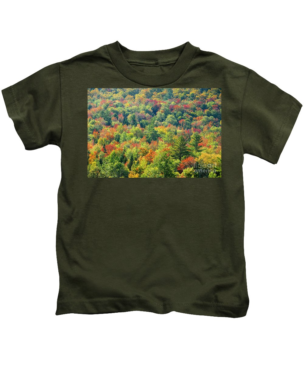 Adirondack Mountains Kids T-Shirt featuring the photograph Fall Forest by David Lee Thompson