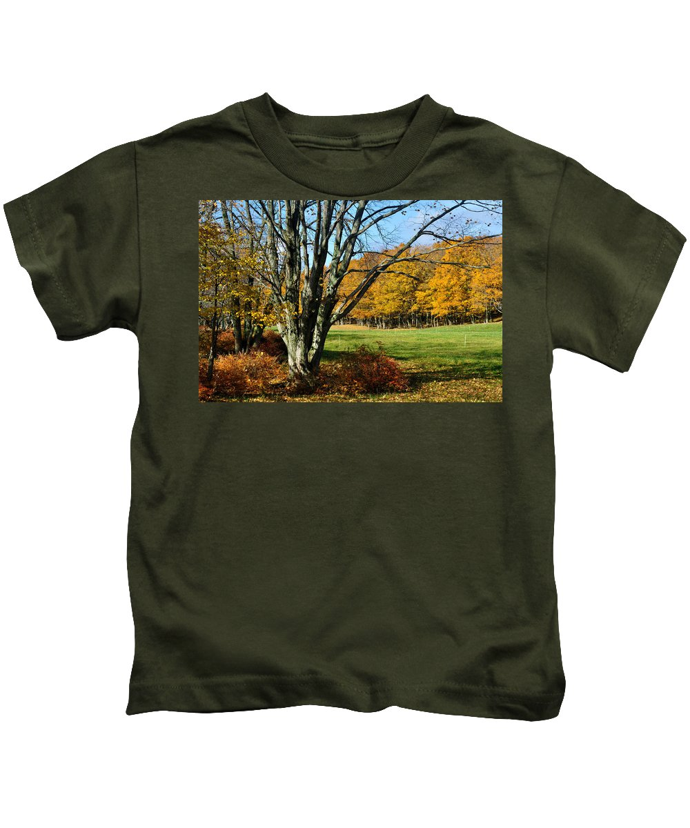 Trees Kids T-Shirt featuring the photograph Fall Pasture by Tim Nyberg