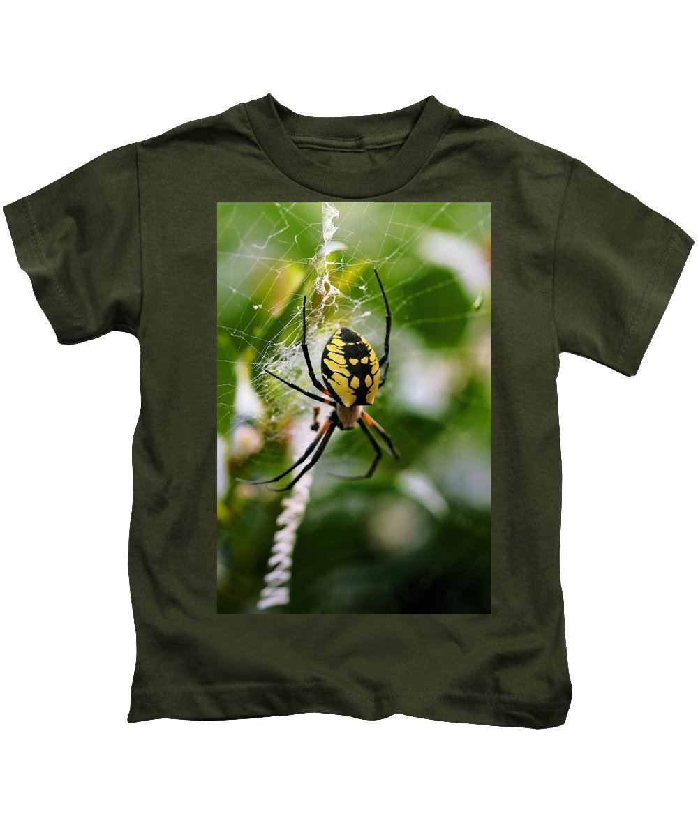 Argiope Kids T-Shirt featuring the photograph False Threats by Angela Rath