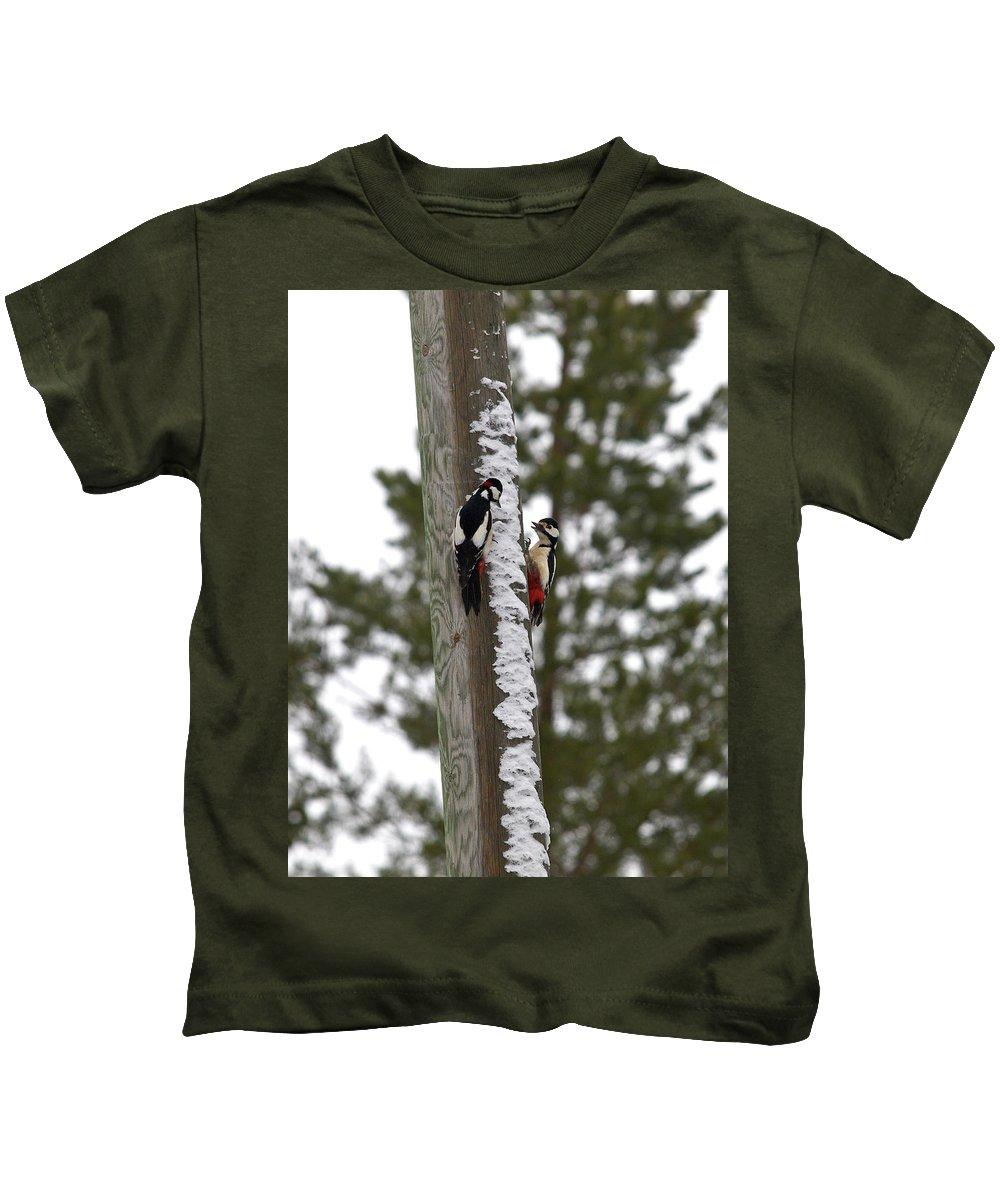 Lehtokukka Kids T-Shirt featuring the photograph Family Talk by Jouko Lehto