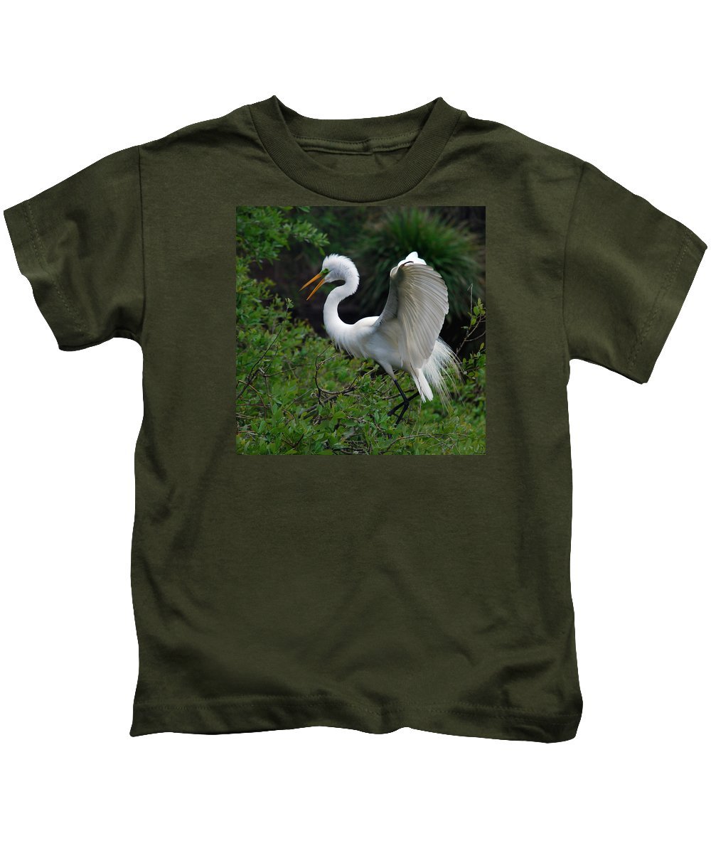 Names Of Birds Kids T-Shirt featuring the photograph Feather 8-8 by Skip Willits