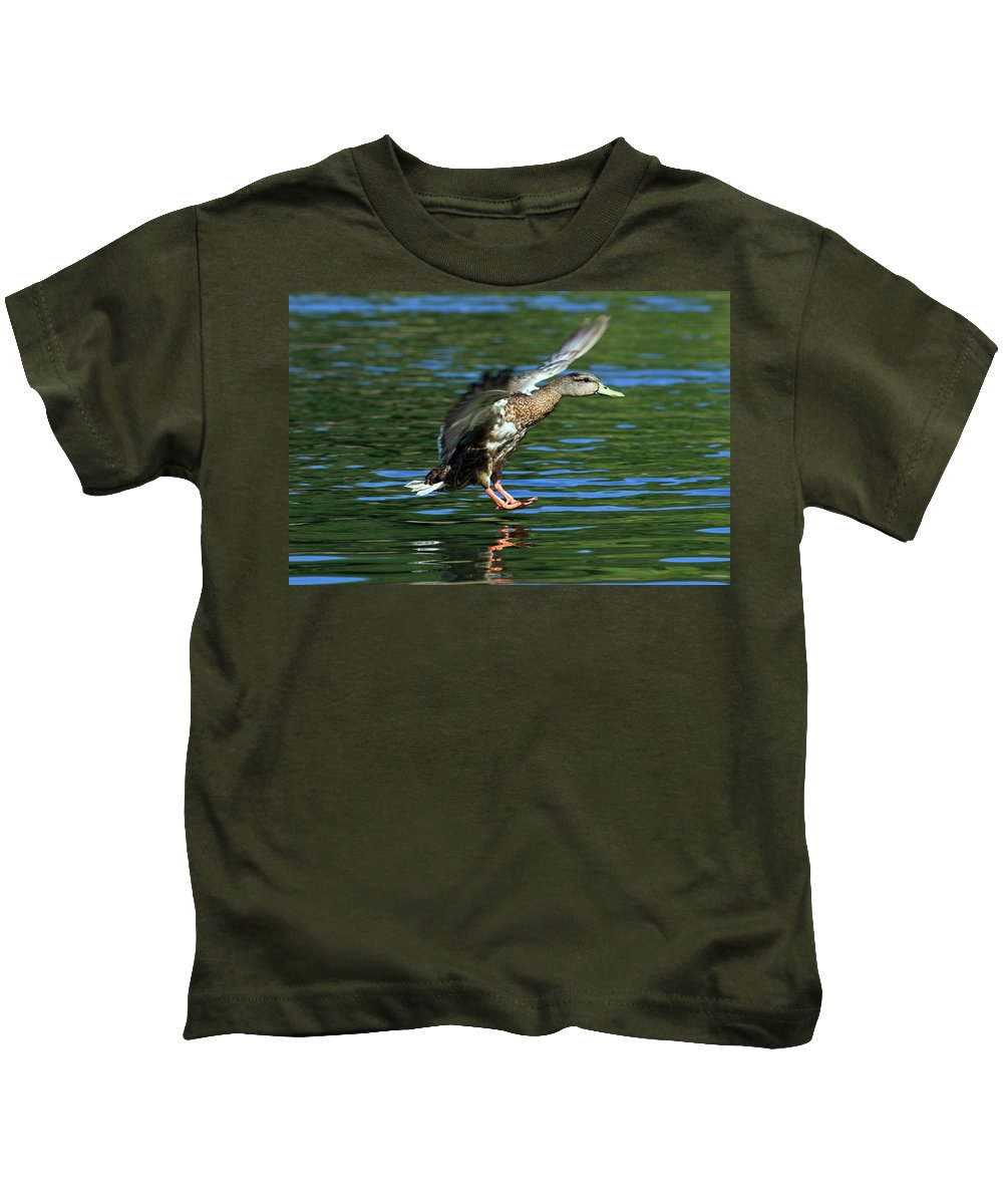 Flying Kids T-Shirt featuring the photograph Female Duck Landing by Randall Ingalls
