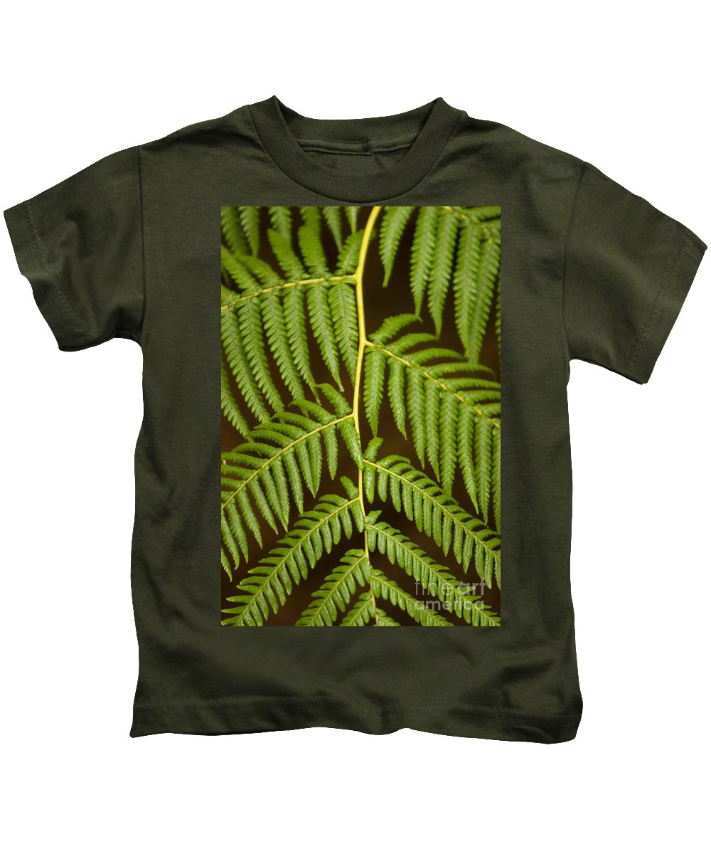 Abstract Kids T-Shirt featuring the photograph Fern Pattern by Ron Dahlquist - Printscapes