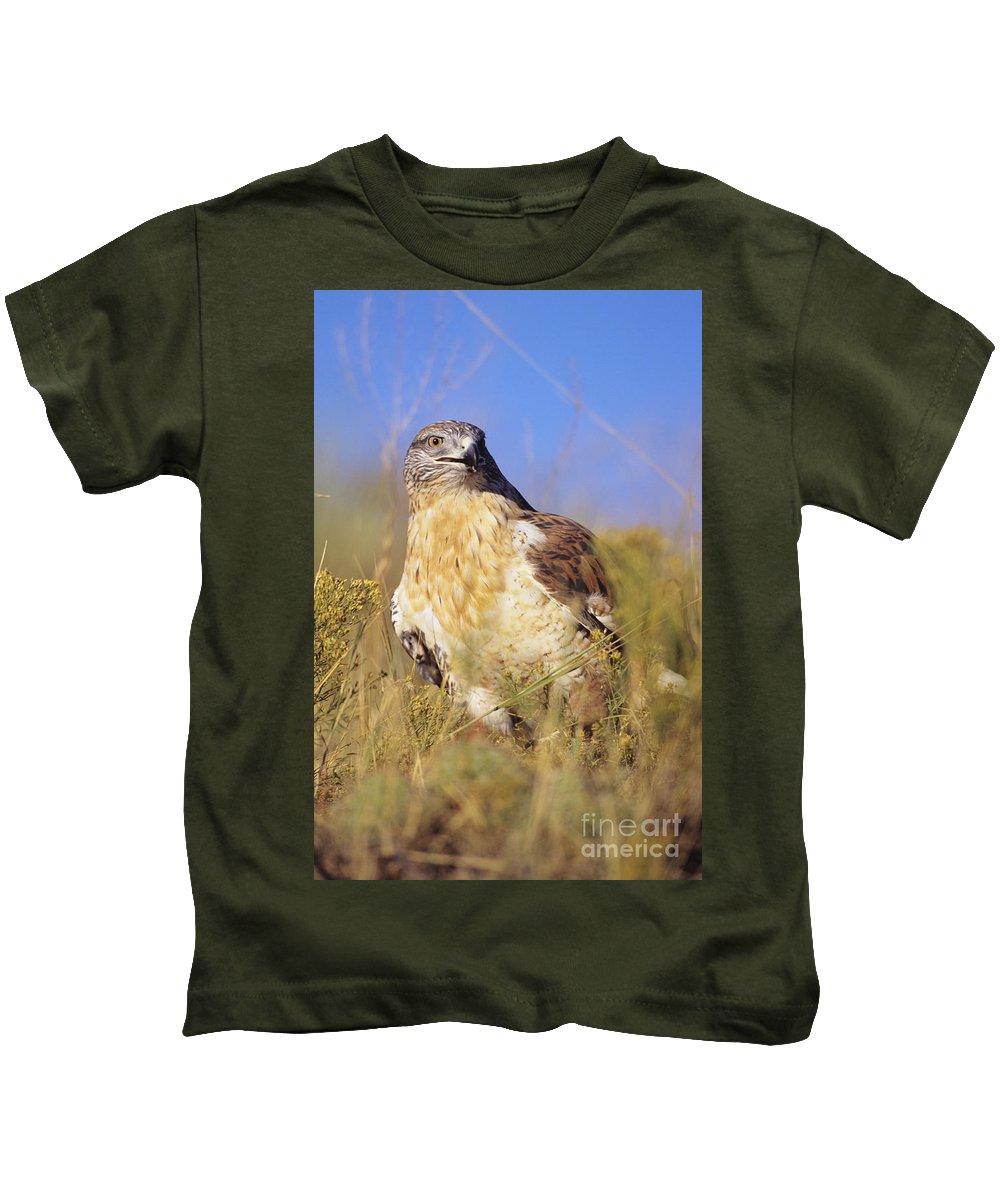 Animal Art Kids T-Shirt featuring the photograph Feruginous Hawk by John Hyde - Printscapes