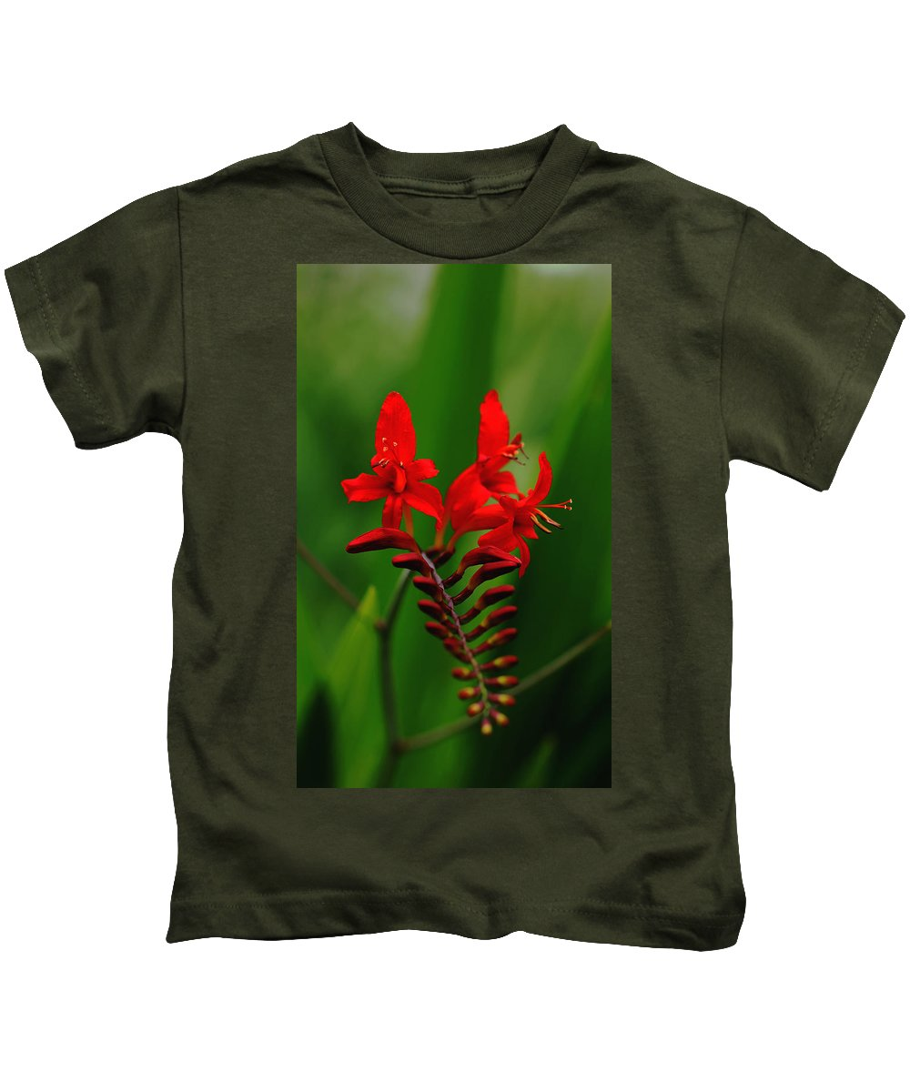 Crocosmia Kids T-Shirt featuring the photograph Fiery Lucifer by Debbie Oppermann