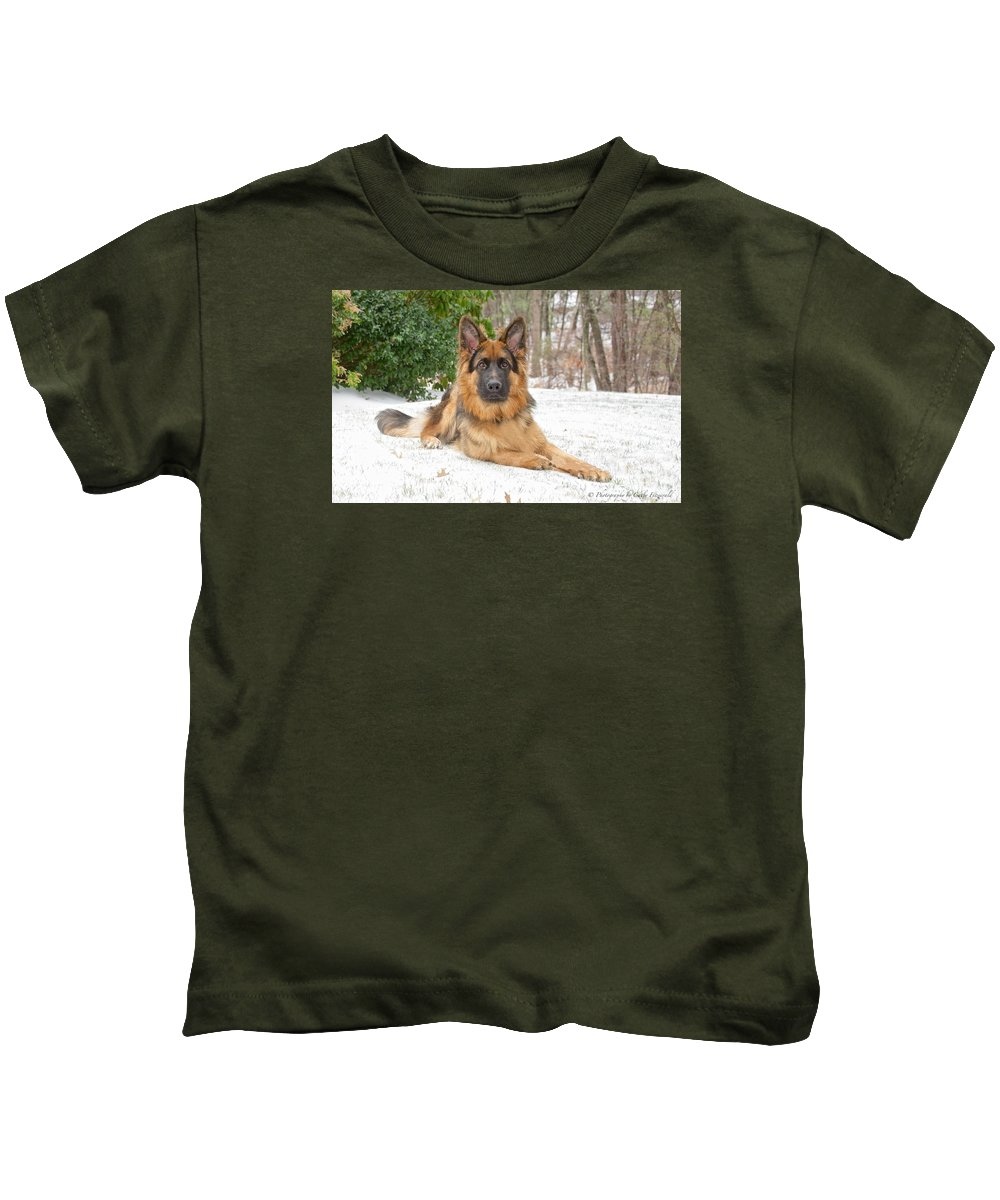 Dog Kids T-Shirt featuring the photograph Finn by Cathy Fitzgerald