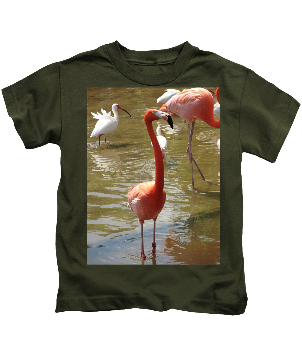 Flamingo Kids T-Shirt featuring the photograph Flamingo II by Stacey May