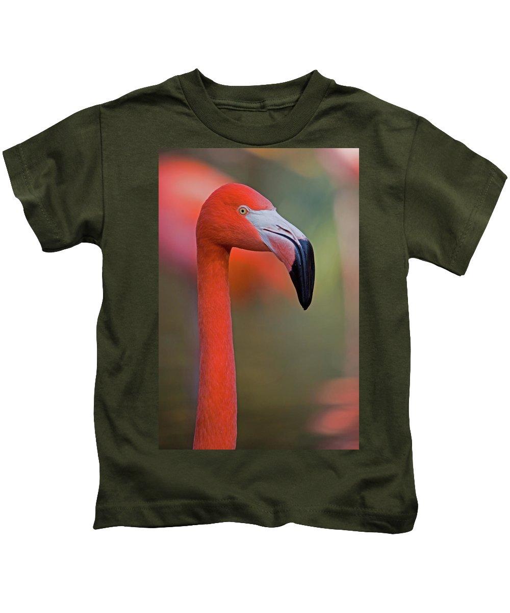 Animal Kids T-Shirt featuring the photograph Flamingo Portrait - Sacramento Zoo by Randall Ingalls