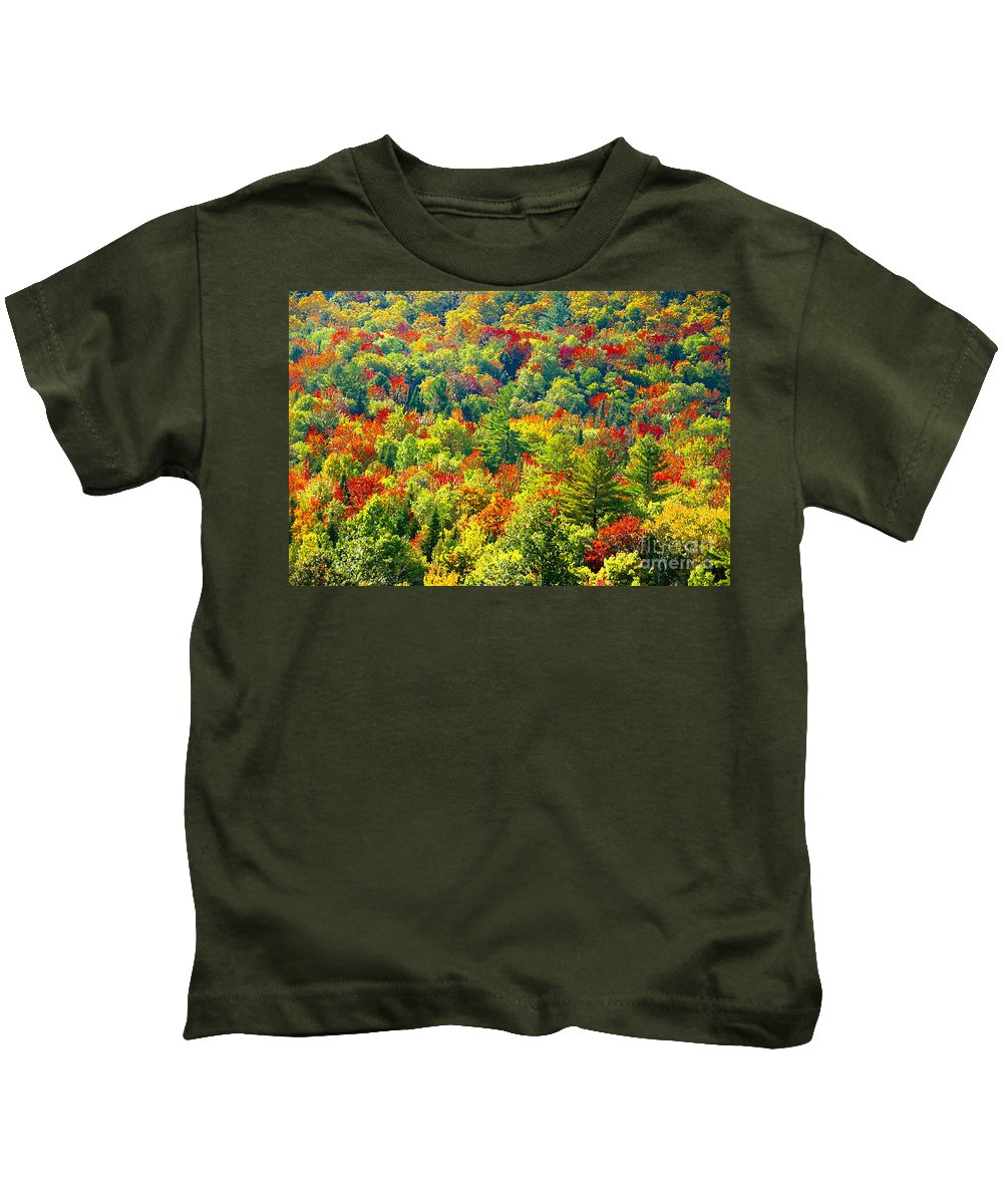 Forest Kids T-Shirt featuring the photograph Forest Of Color by David Lee Thompson
