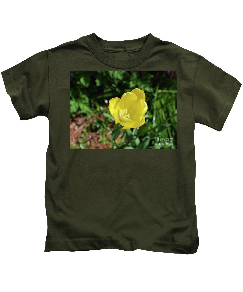 Tulip Kids T-Shirt featuring the photograph Garden With Beautiful Flowering Yellow Tulip In Bloom by DejaVu Designs