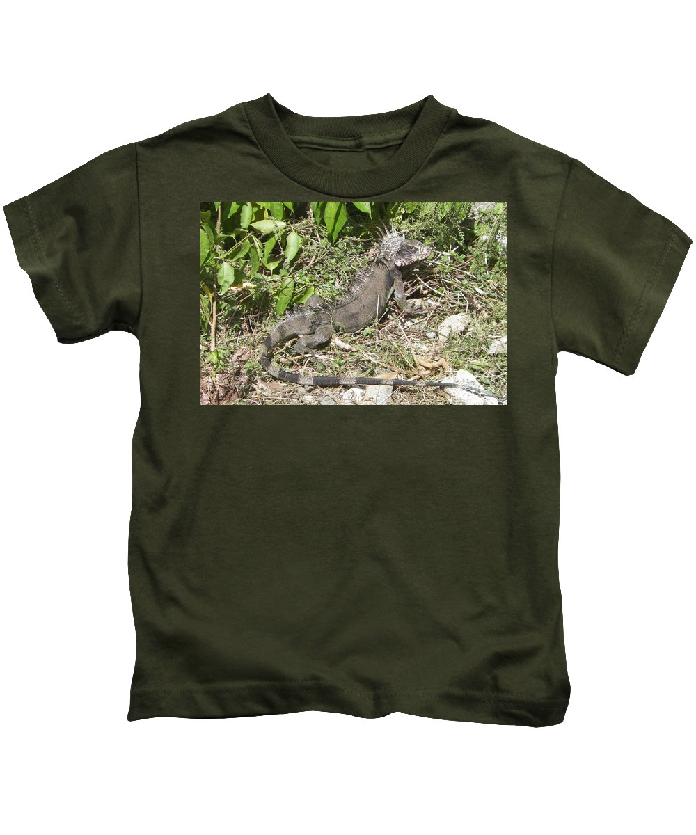 Iguana Kids T-Shirt featuring the photograph Getting Some Sun by Gina Sullivan