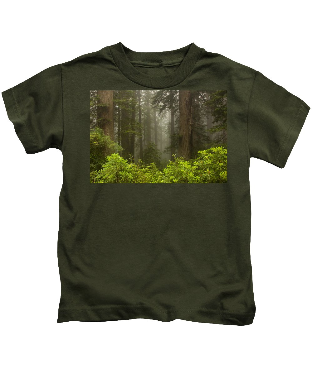 Redwood Kids T-Shirt featuring the photograph Giants In The Mist by Mike Dawson