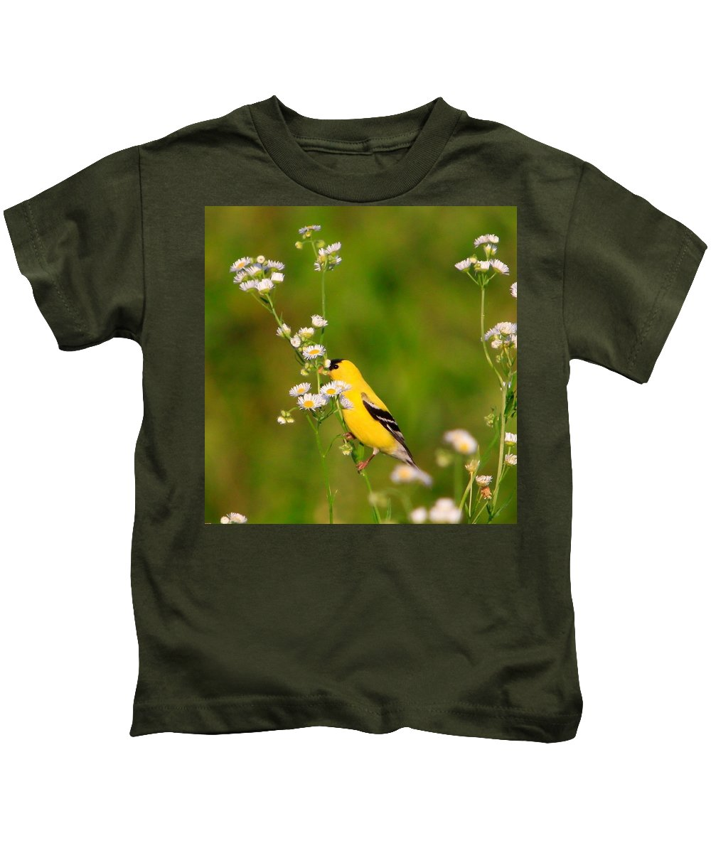 Gold Finch Kids T-Shirt featuring the photograph Gold Finches-3 by Robert Pearson