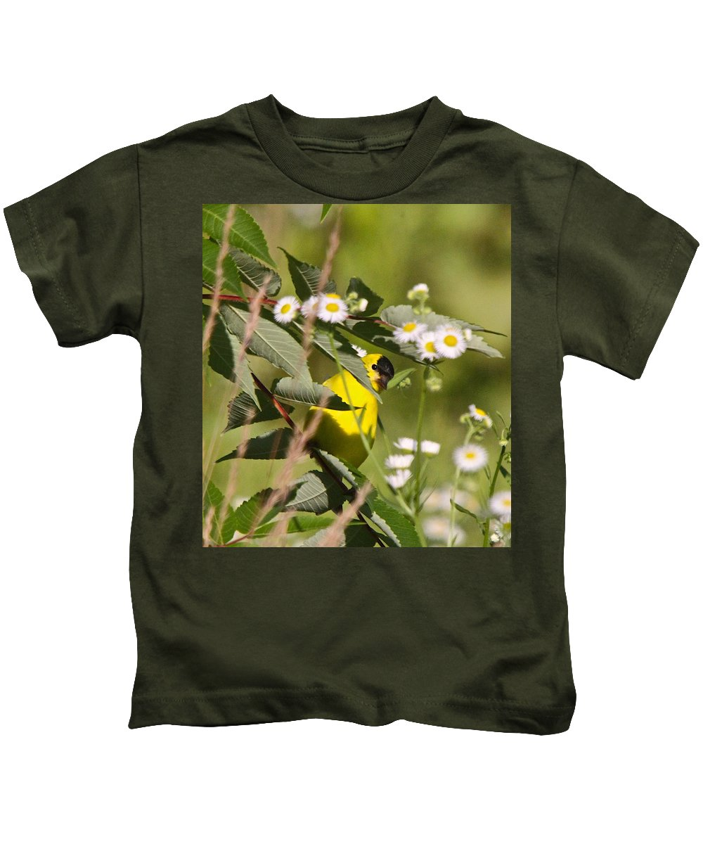 Related Tags: Kids T-Shirt featuring the photograph Gold Finches-7 by Robert Pearson