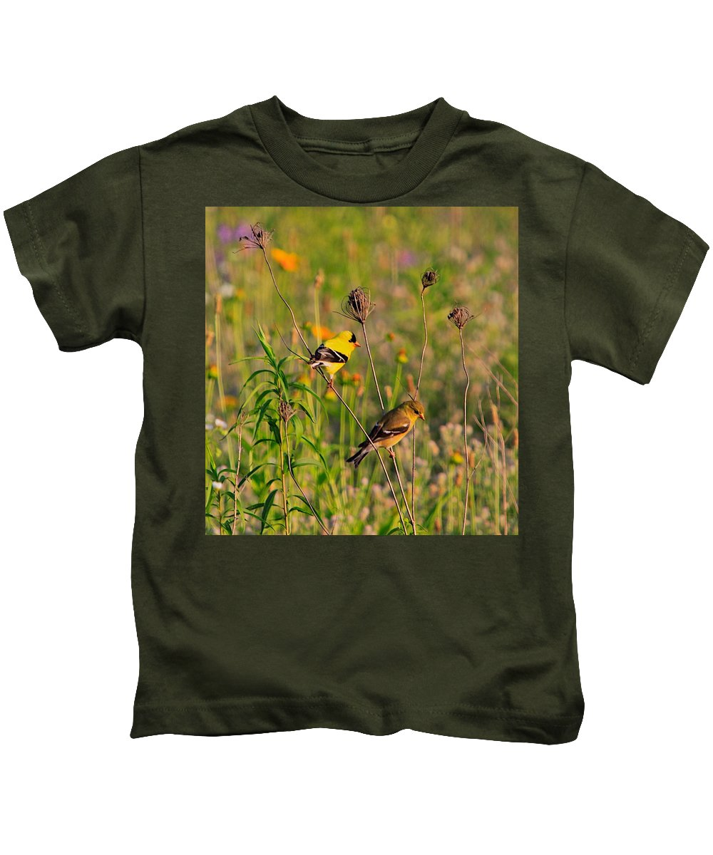 Gold Finch Kids T-Shirt featuring the photograph Gold Finches by Robert Pearson