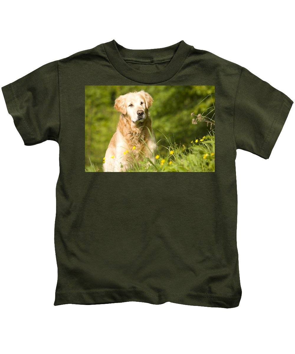Animals Kids T-Shirt featuring the photograph golden Retriever in garden by Ian Middleton