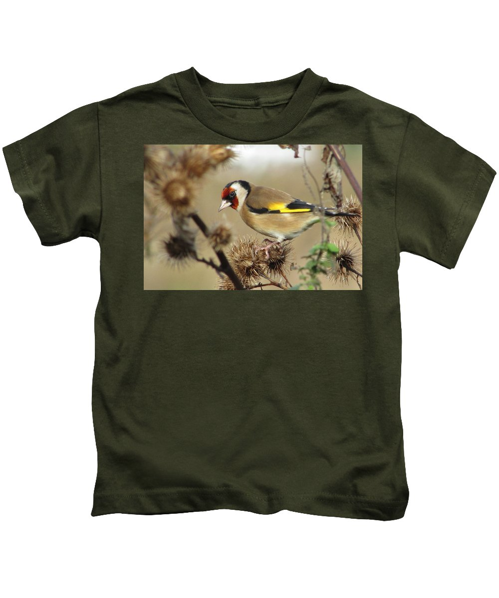 Goldfinch Kids T-Shirt featuring the photograph Goldfinch by Sarah Fowle