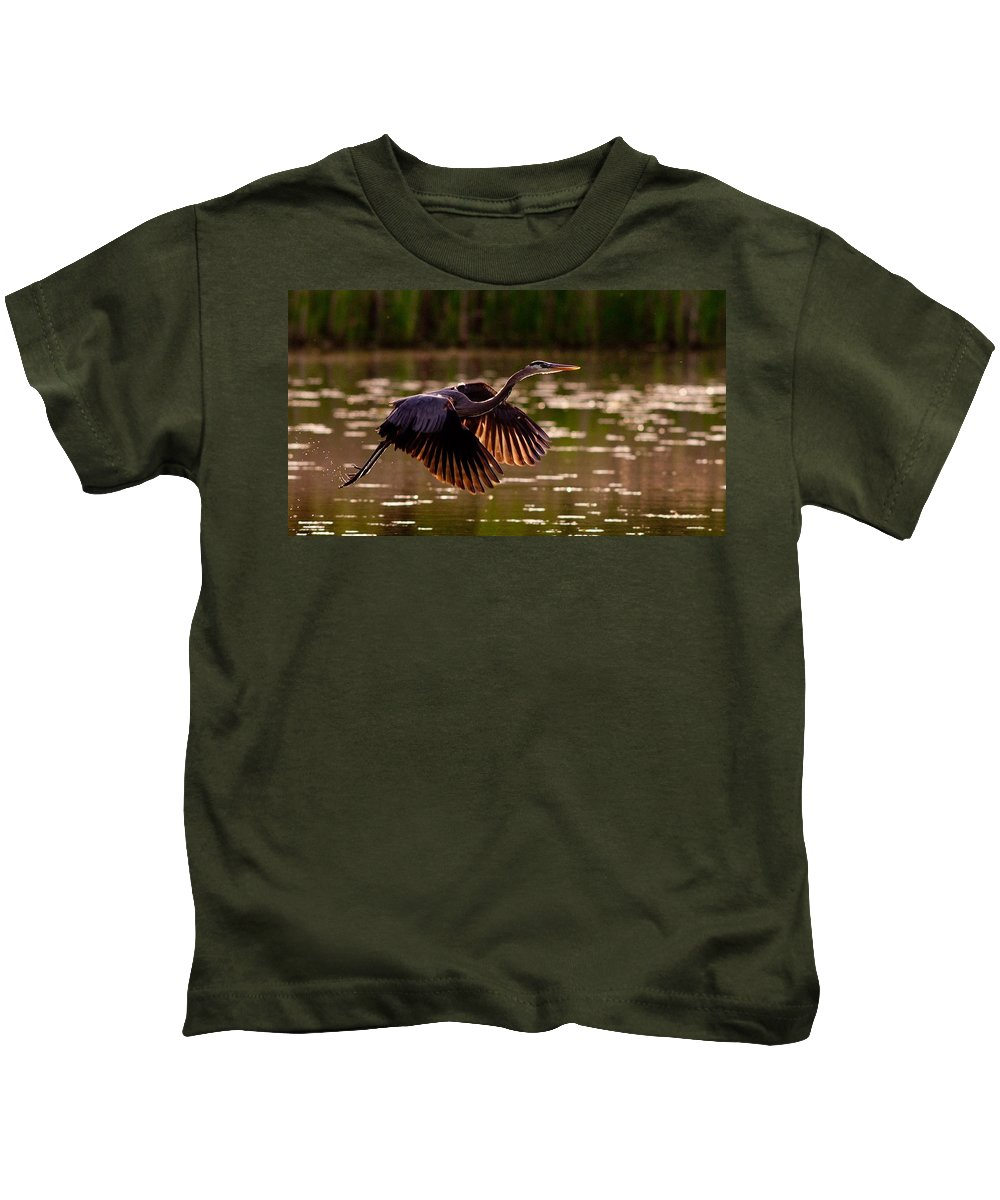 Gray Heron Kids T-Shirt featuring the digital art Gray Heron by Dorothy Binder