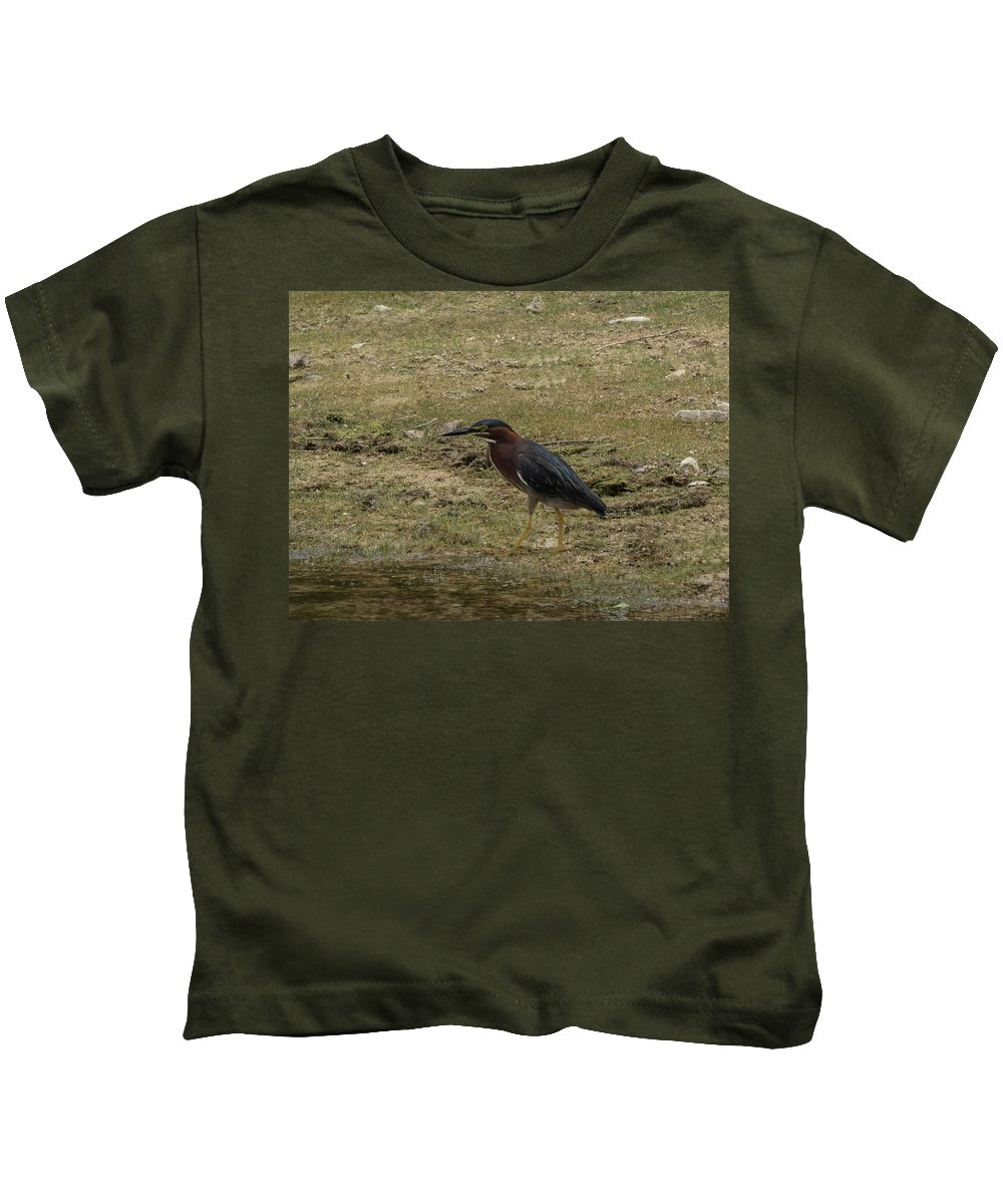 Green Heron Kids T-Shirt featuring the photograph Green Heron In Central Texas by JG Thompson