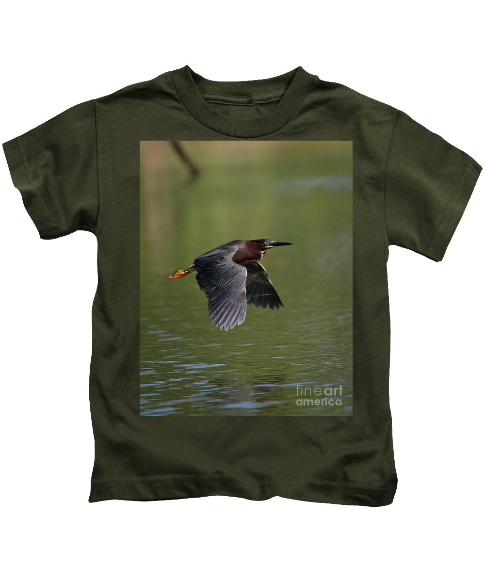 Green Kids T-Shirt featuring the photograph Green Heron In Flight by Douglas Stucky