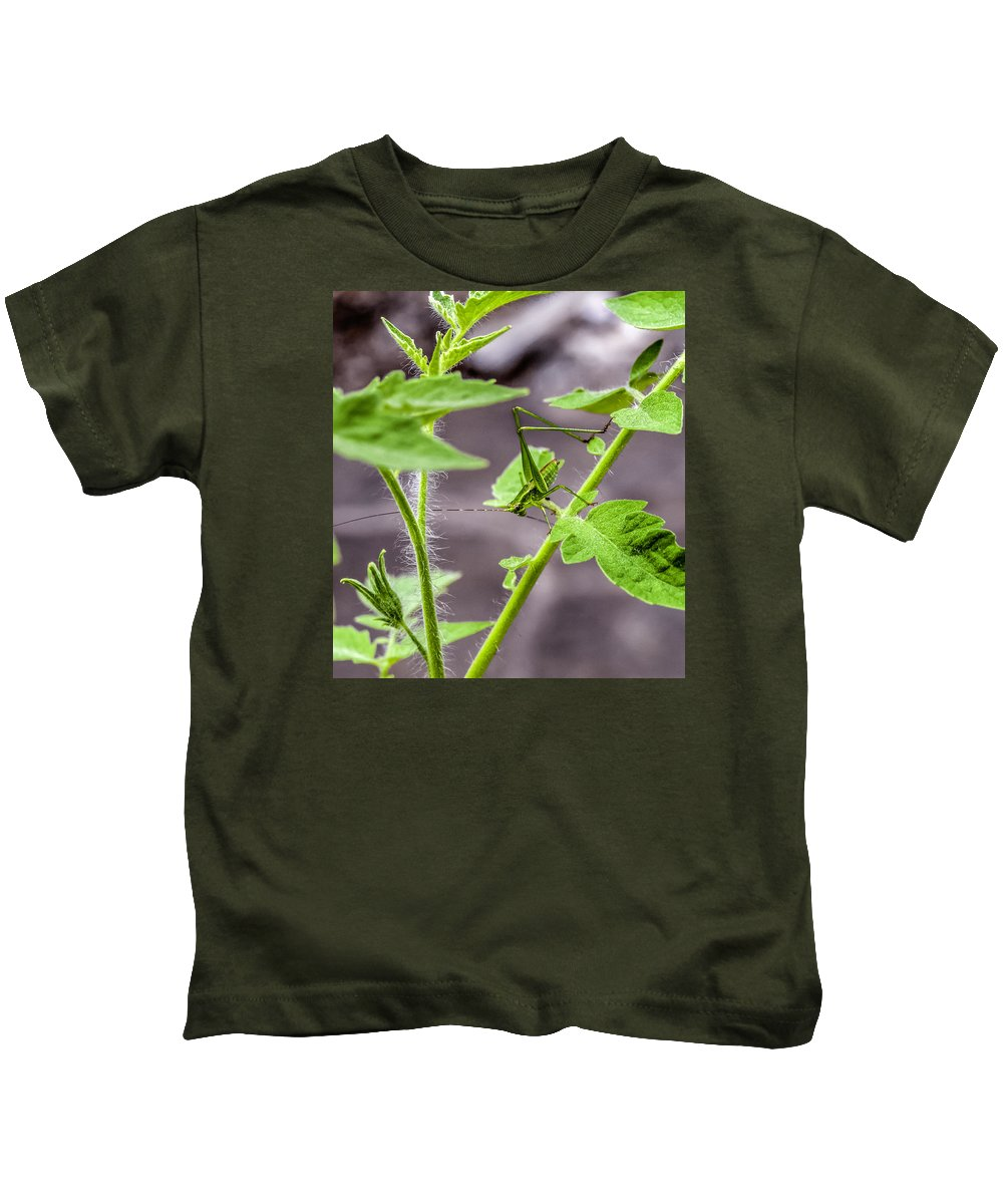 Insect Kids T-Shirt featuring the photograph Green by Jim Collier