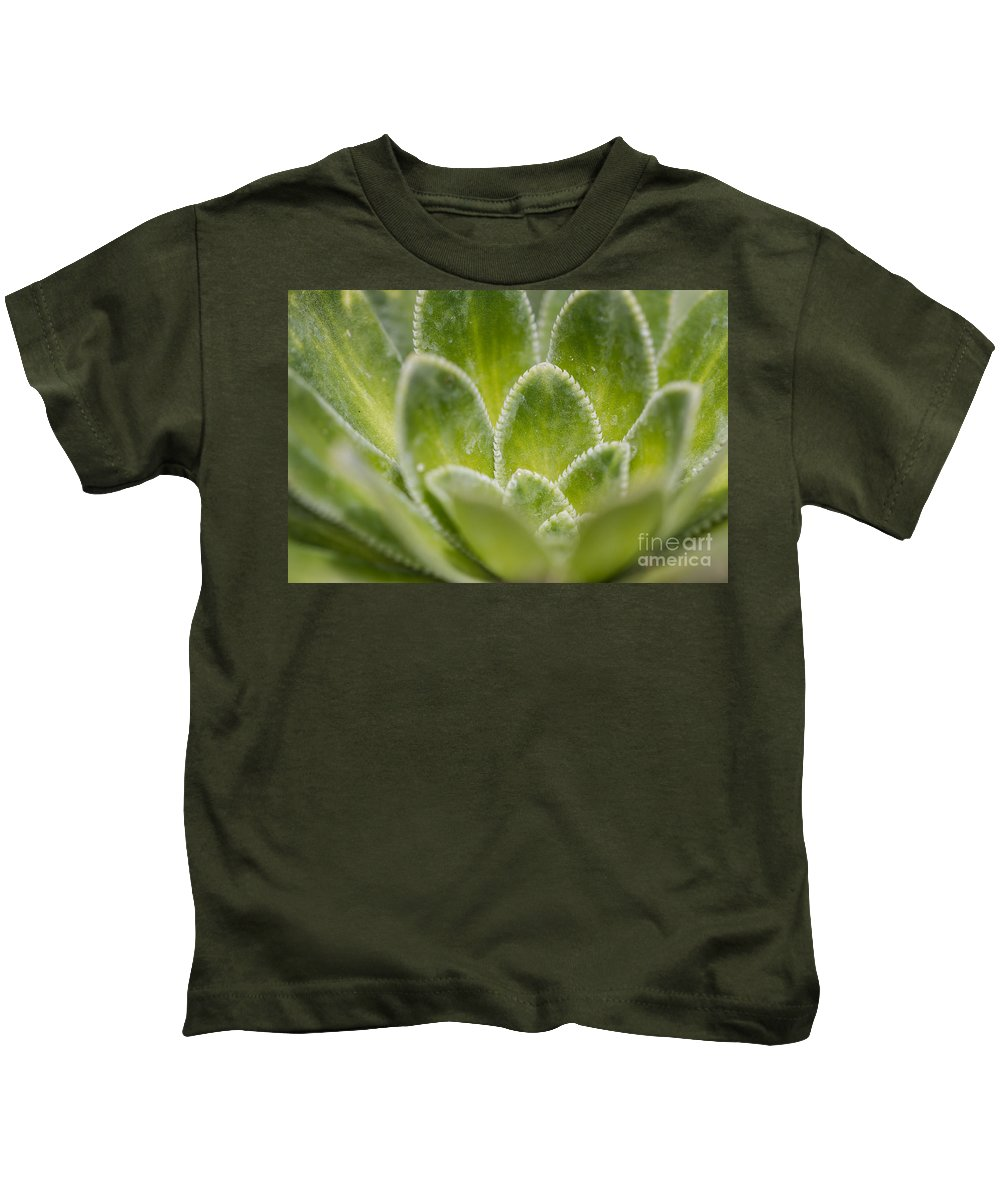 Colorado Kids T-Shirt featuring the photograph Green Succulent by Ashley M Conger