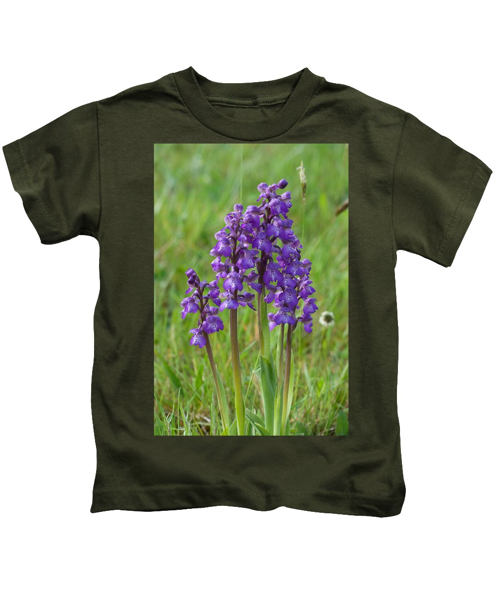 Orchid.flower Kids T-Shirt featuring the photograph Green-winged Orchids by Bob Kemp