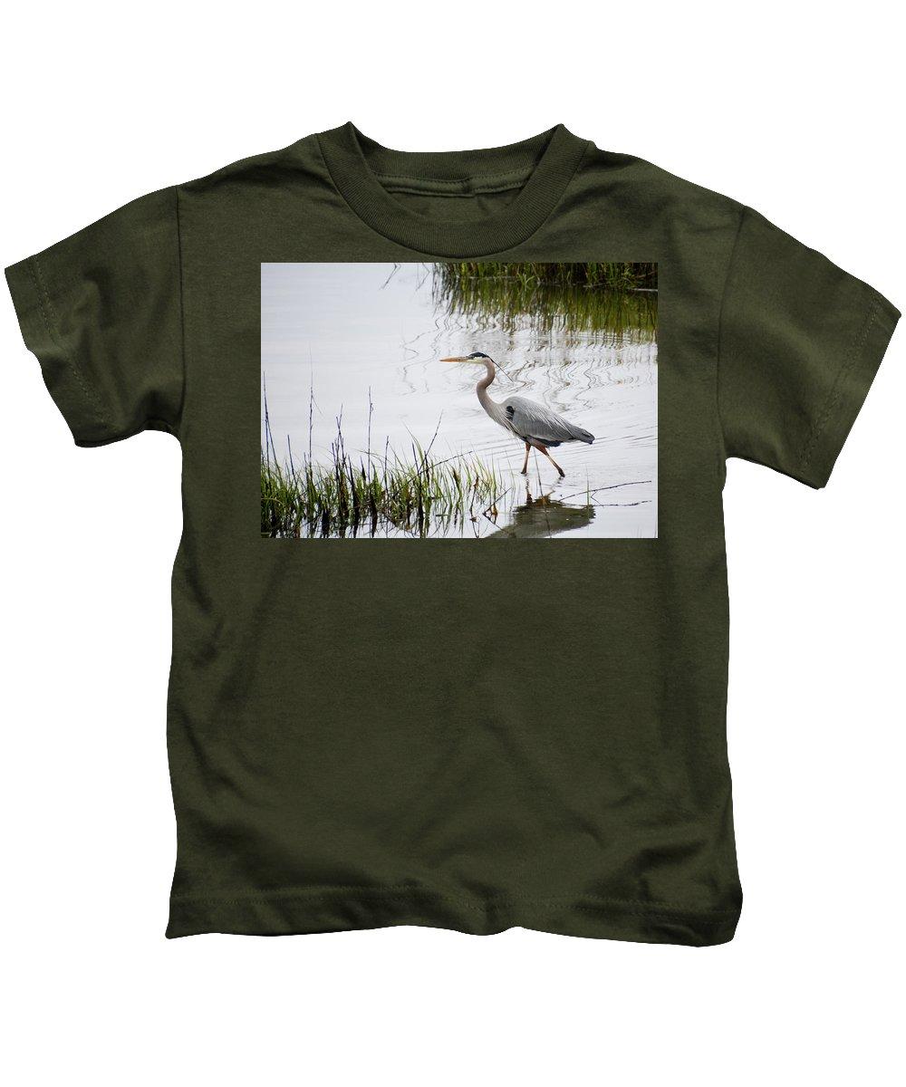 Avian Kids T-Shirt featuring the photograph Grey Heron #3 by Tim Bond