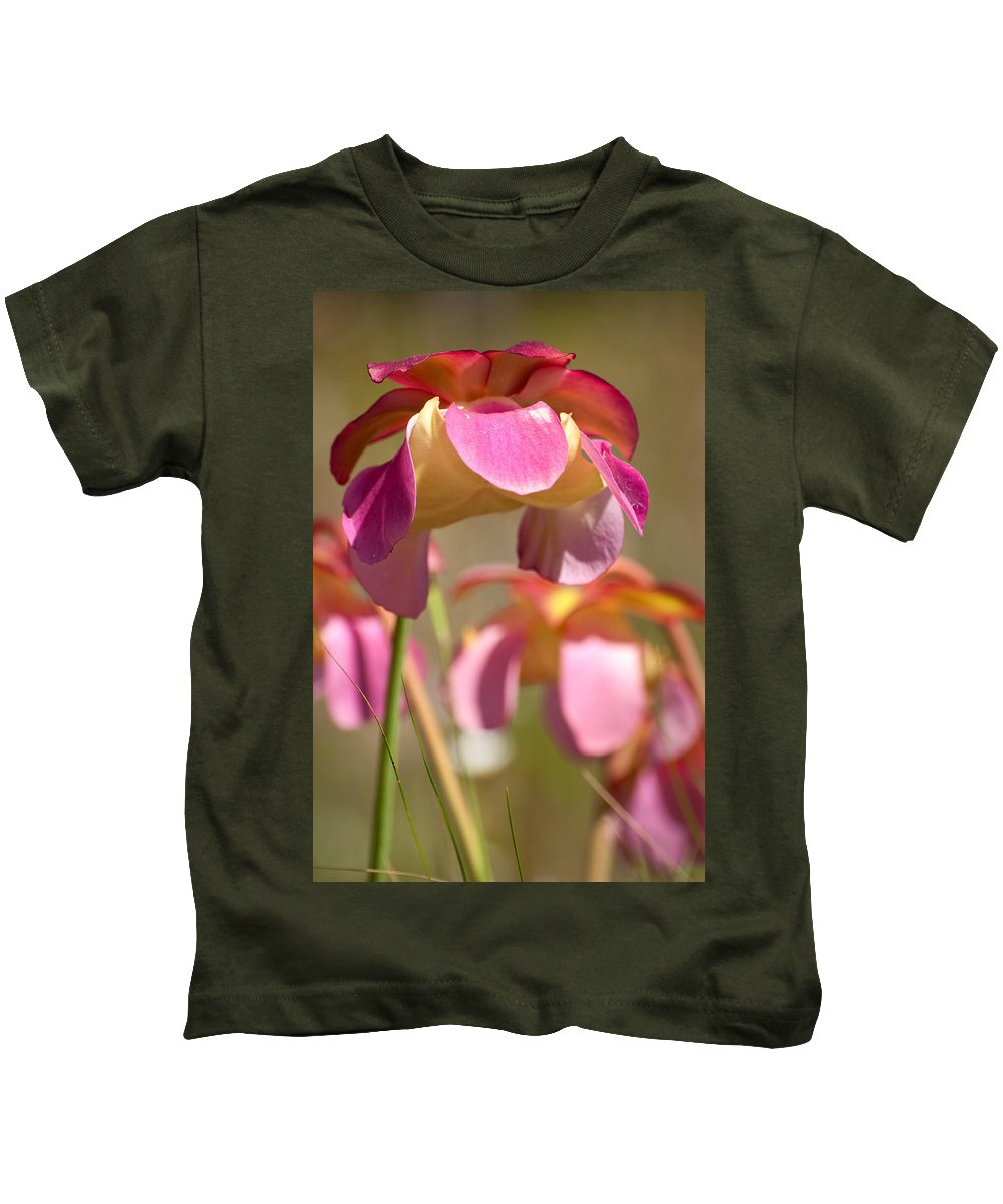 Pitcher Kids T-Shirt featuring the photograph Gulf Purple Pitcher Plant by Rich Leighton