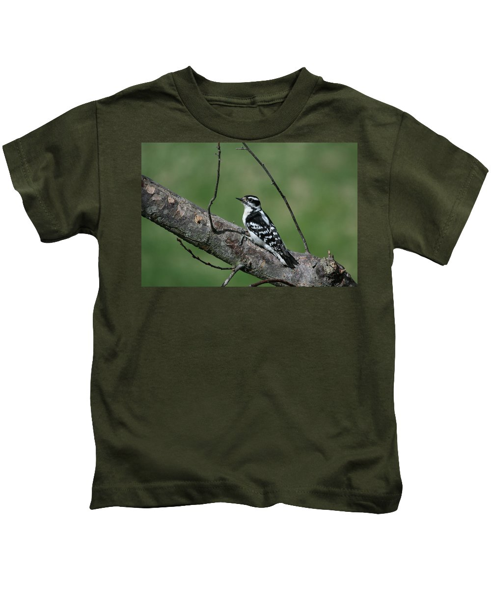 Woodpecker Kids T-Shirt featuring the photograph Hairy Woodpecker by Karol Livote