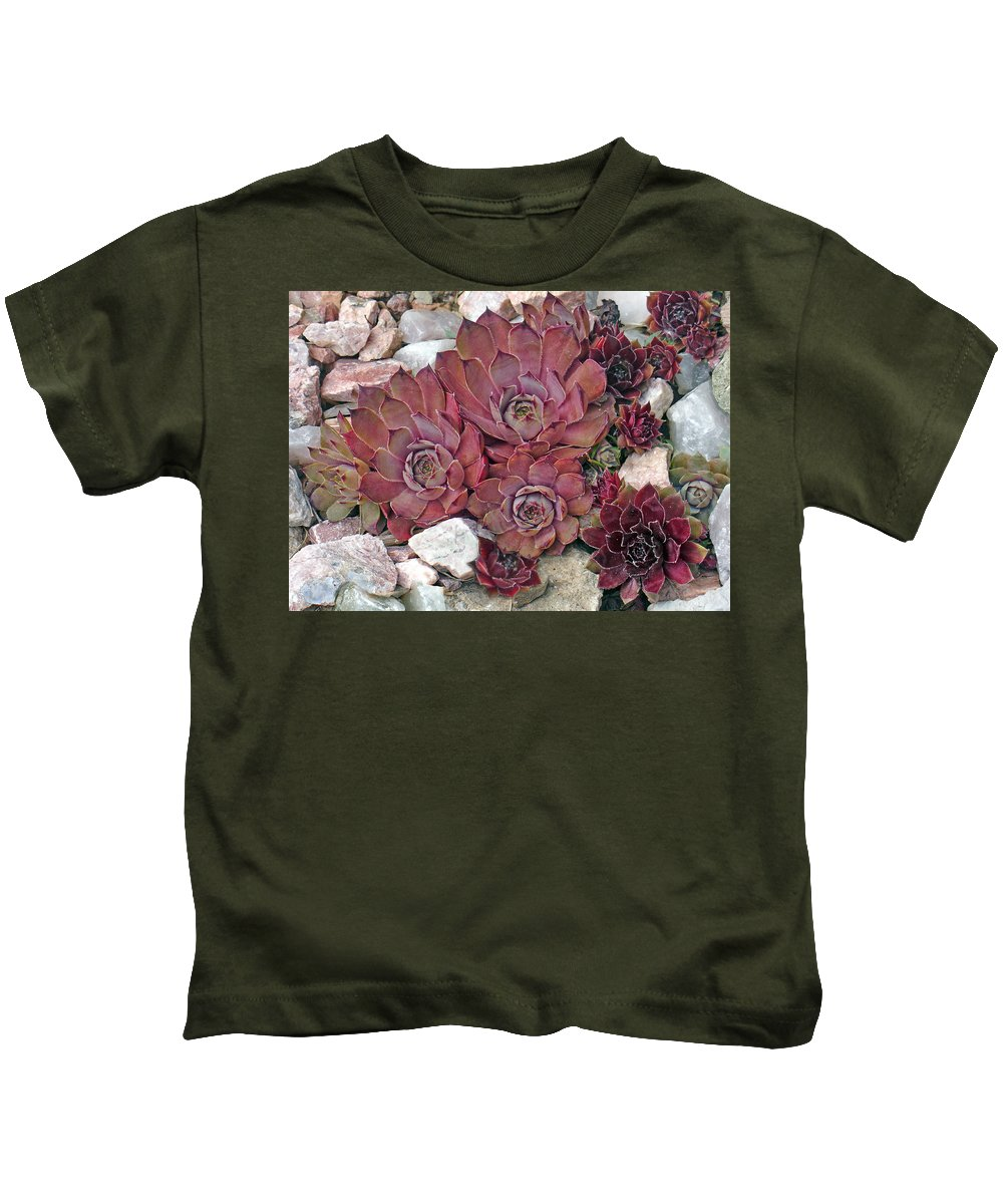 Landscape Kids T-Shirt featuring the photograph Hens And Chickens by Steve Karol