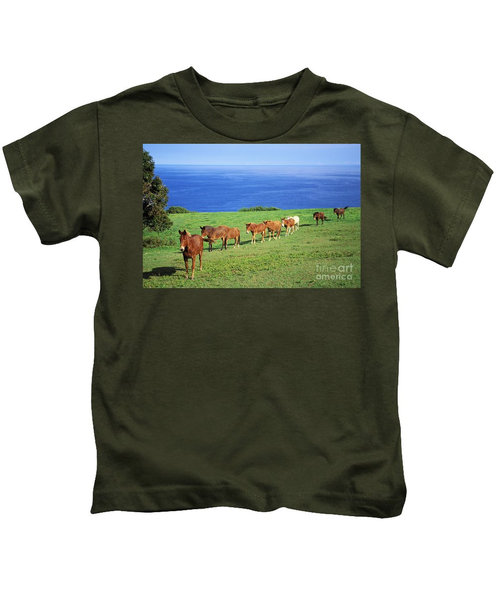 Afternoon Kids T-Shirt featuring the photograph Horses by Bob Abraham - Printscapes