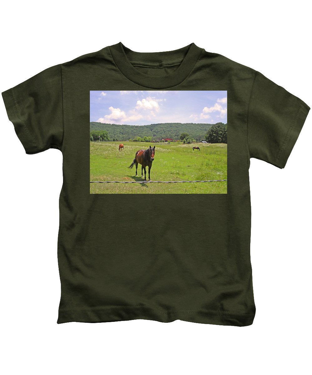 Horse Kids T-Shirt featuring the photograph Horses In The Pasture by Anne Cameron Cutri