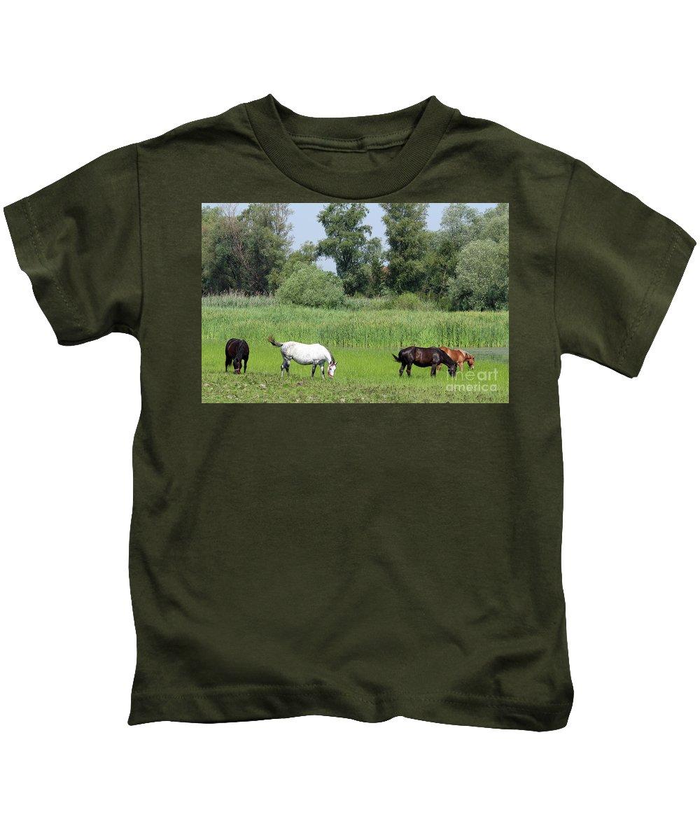 Horse Kids T-Shirt featuring the photograph Horses On Pasture Nature Farm Scene by Goce Risteski
